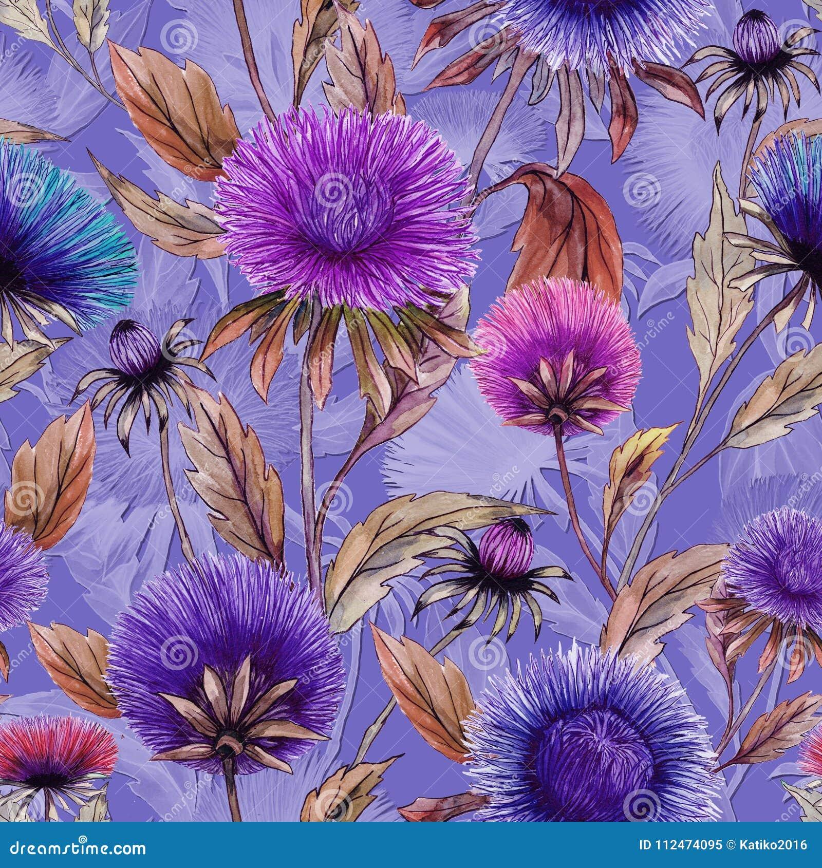 Ο όμορφος αστέρας ανθίζει στα διαφορετικά φωτεινά χρώματα με τα καφετιά φύλλα στο ιώδες υπόβαθρο floral πρότυπο άνευ ραφής