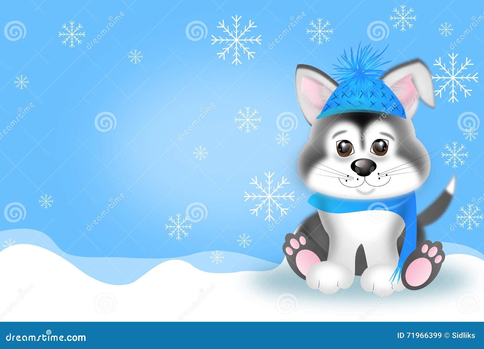 西伯利亚爱斯基摩人小狗的逗人喜爱的例证在冬天.图片