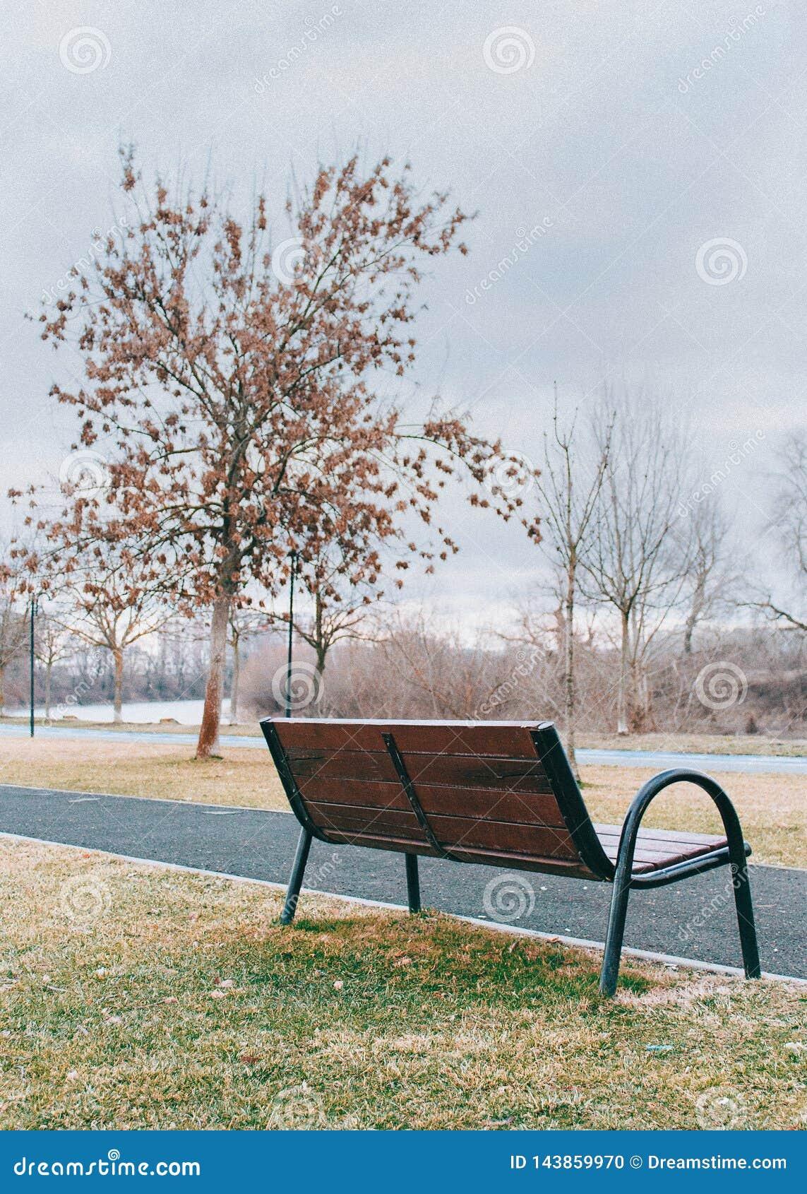 Πάγκος πάρκων το φθινόπωρο