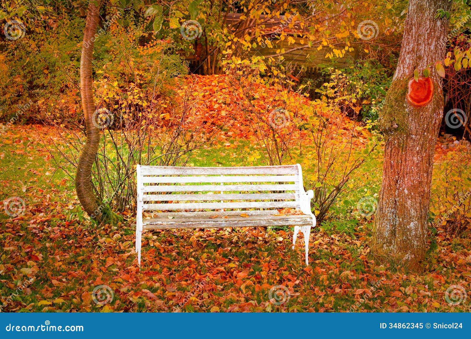 Πάγκος στο δάσος φθινοπώρου