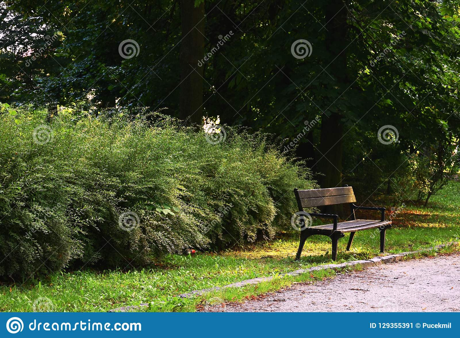 Πάγκος στο πάρκο