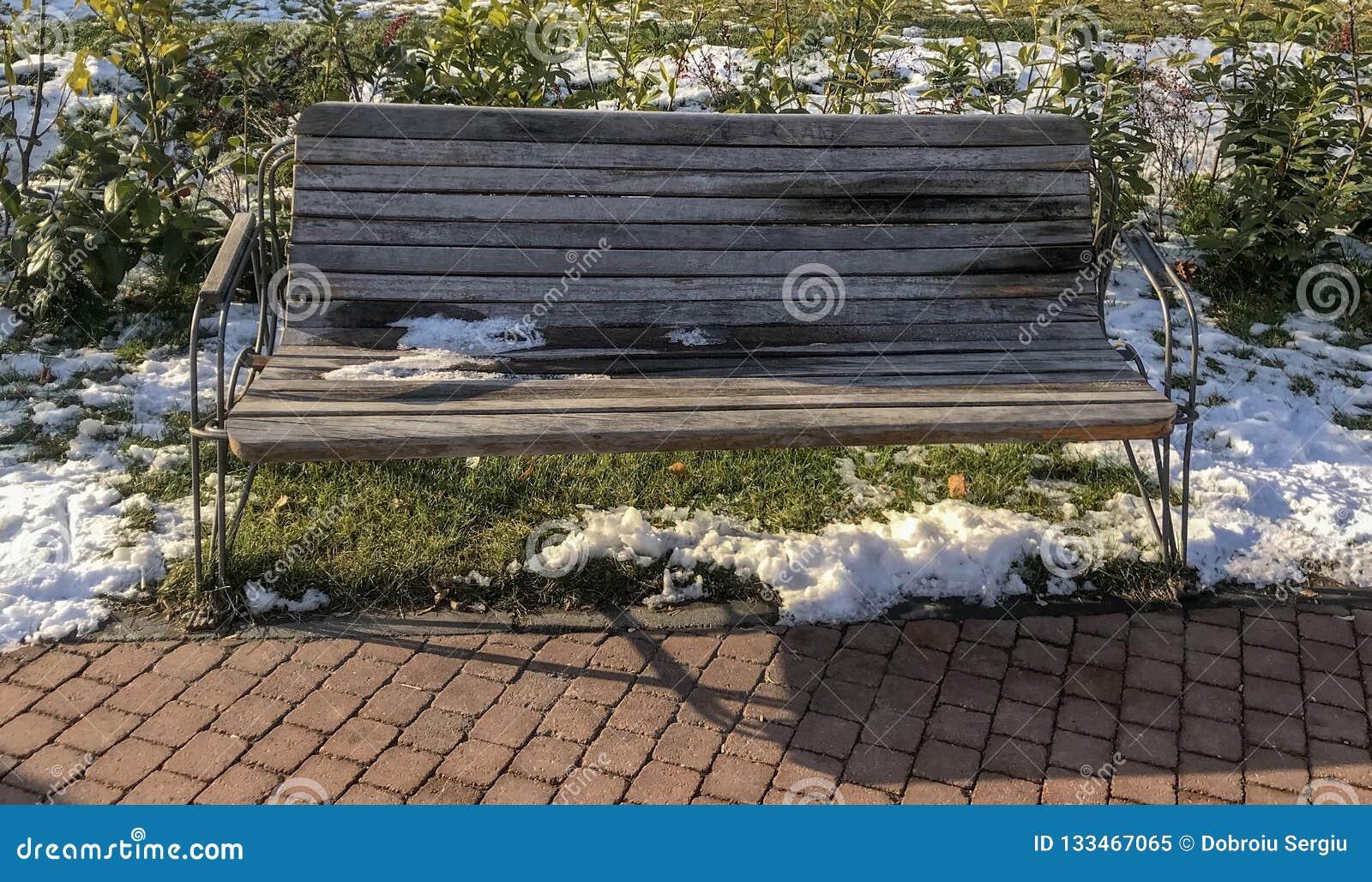 Πάγκος στο πάρκο IOR από το Βουκουρέστι, Ρουμανία