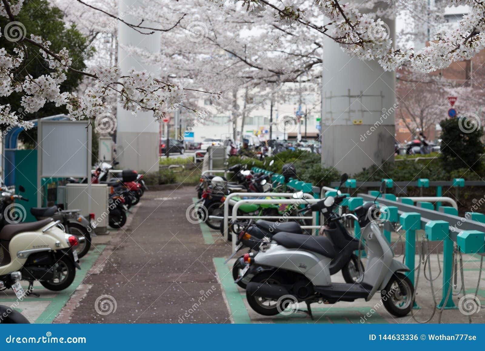 πάρκο μοτοσικλετών