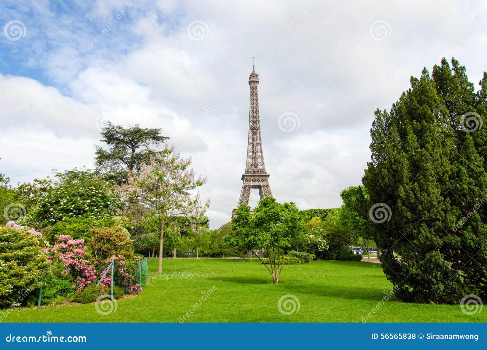 Download Πάρκο του Champ De Mars με τον πύργο του Άιφελ Στοκ Εικόνες - εικόνα από πράσινος, άνθος: 56565838