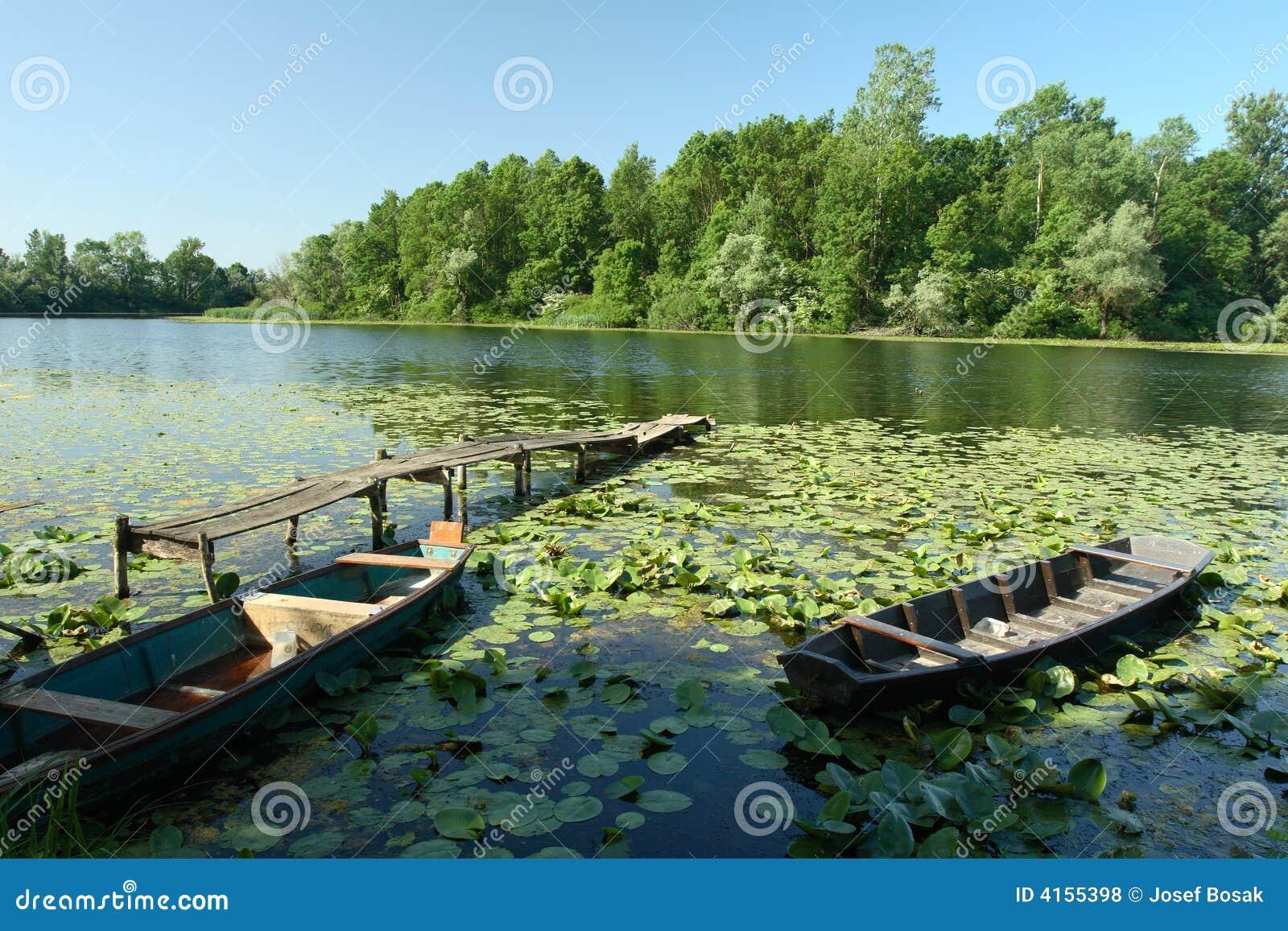 πάρκο φύσης lonjsko της Κροατίας