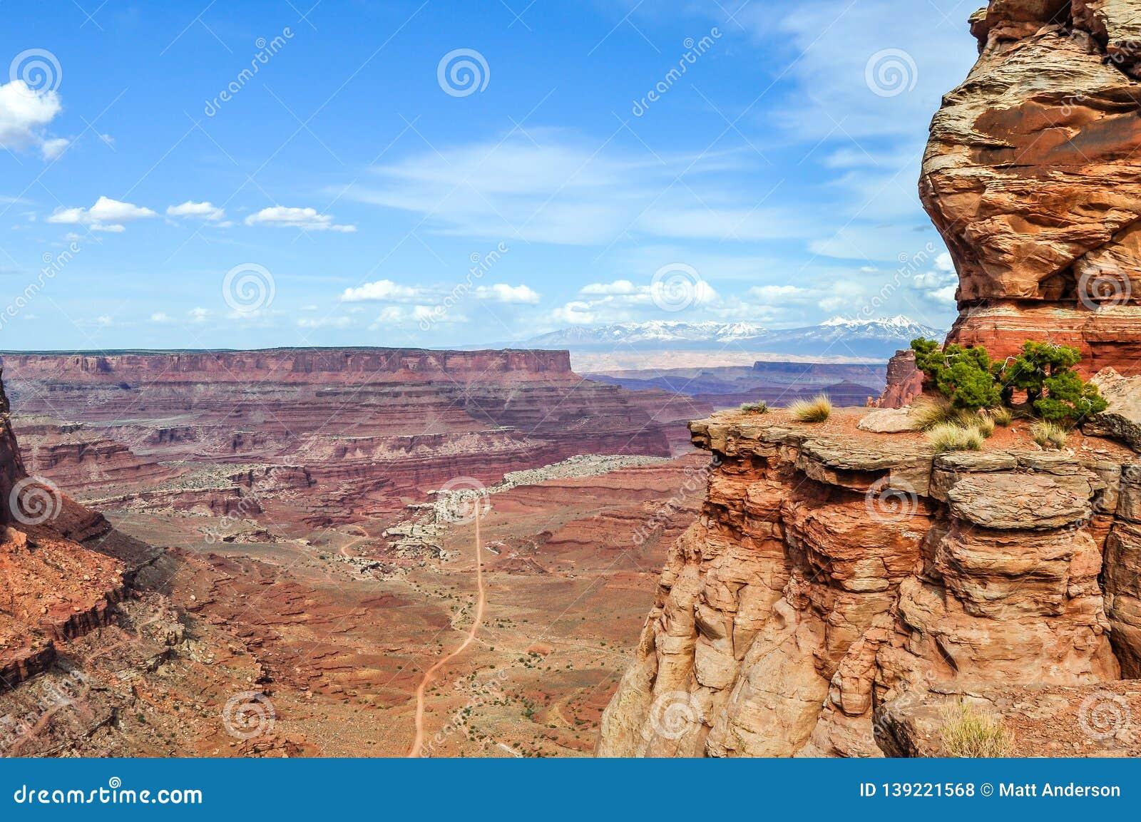 Πέρκα ακρών απότομων βράχων πέρα από το εθνικό πάρκο Canyonlands