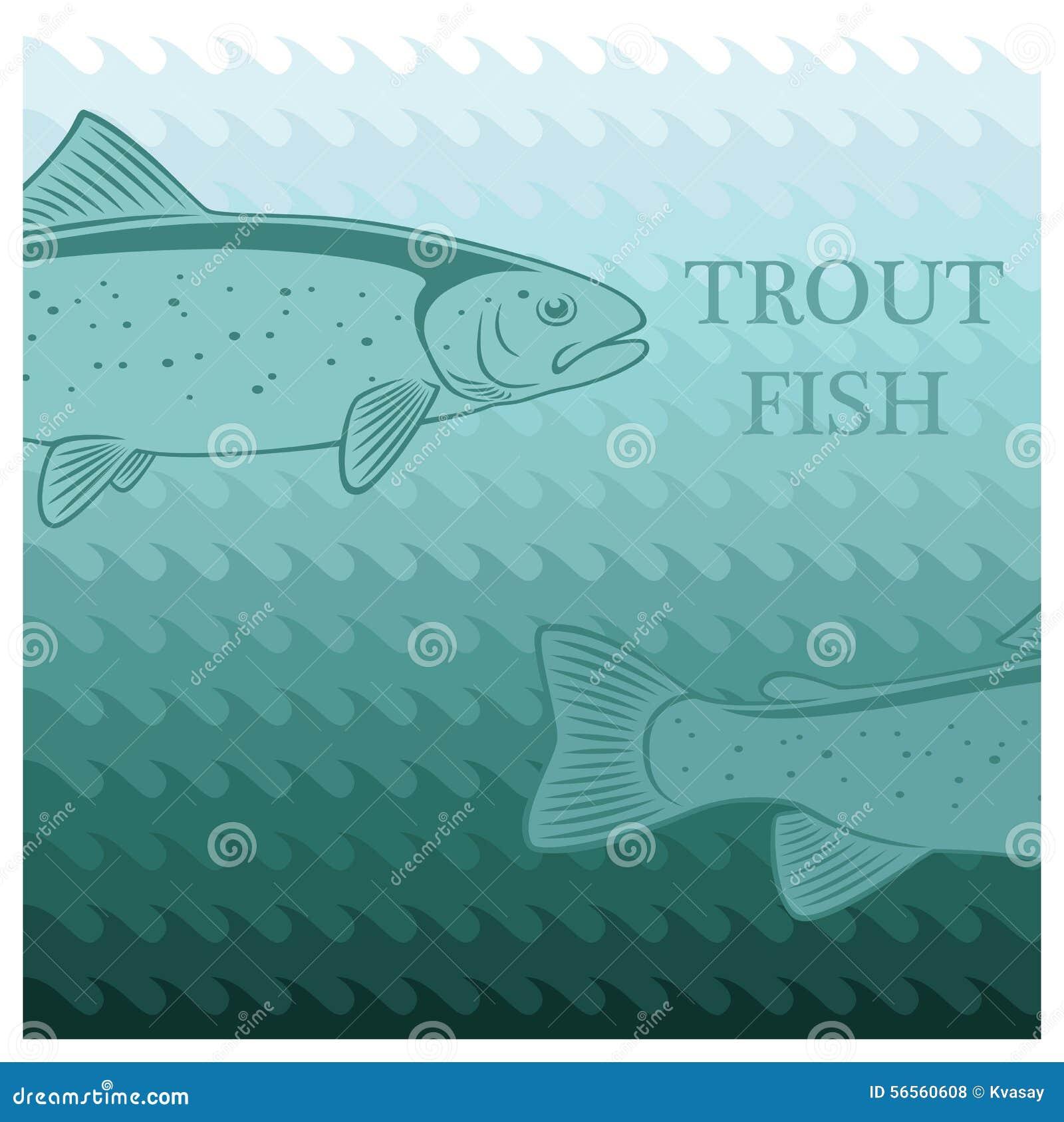 Download πέστροφα απεικόνιση αποθεμάτων. εικονογραφία από θαλασσινά - 56560608