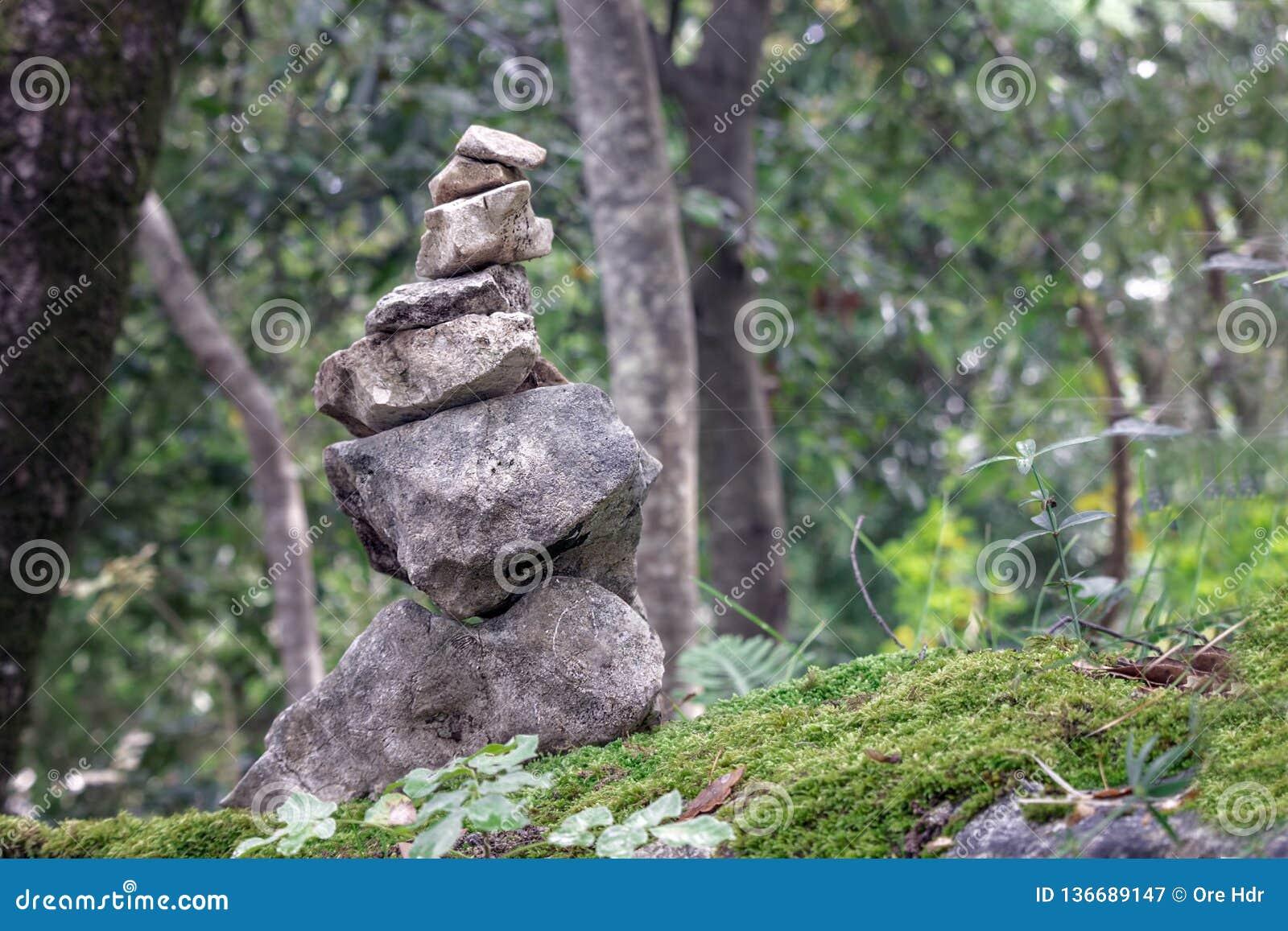 πέτρες που συσσωρεύονται στο δάσος