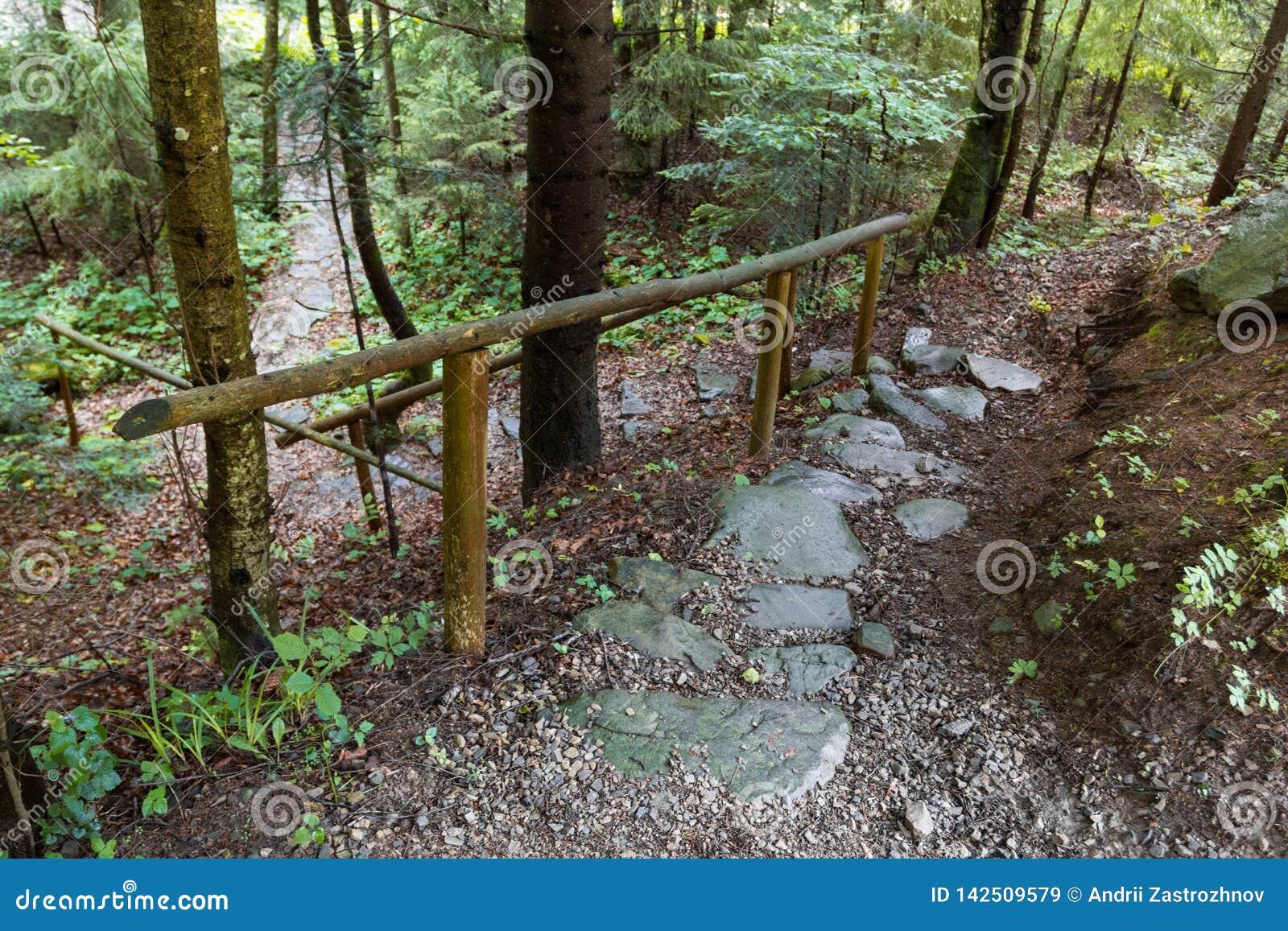 Πέτρινο δασικό ίχνος στο δάσος βουνών