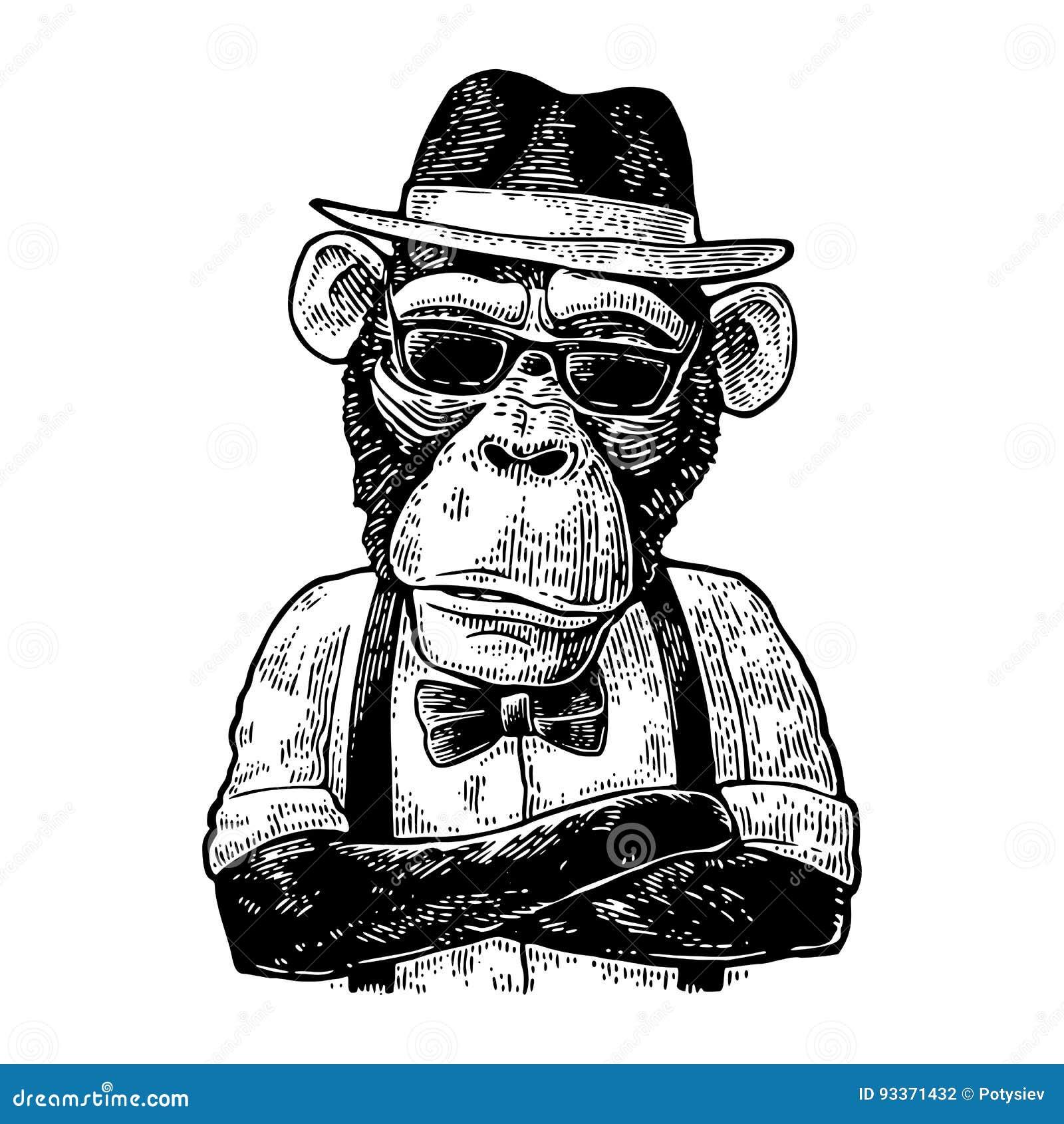 Πίθηκος hipster με τα όπλα crossedin στο καπέλο, το πουκάμισο, τα γυαλιά και το δεσμό τόξων