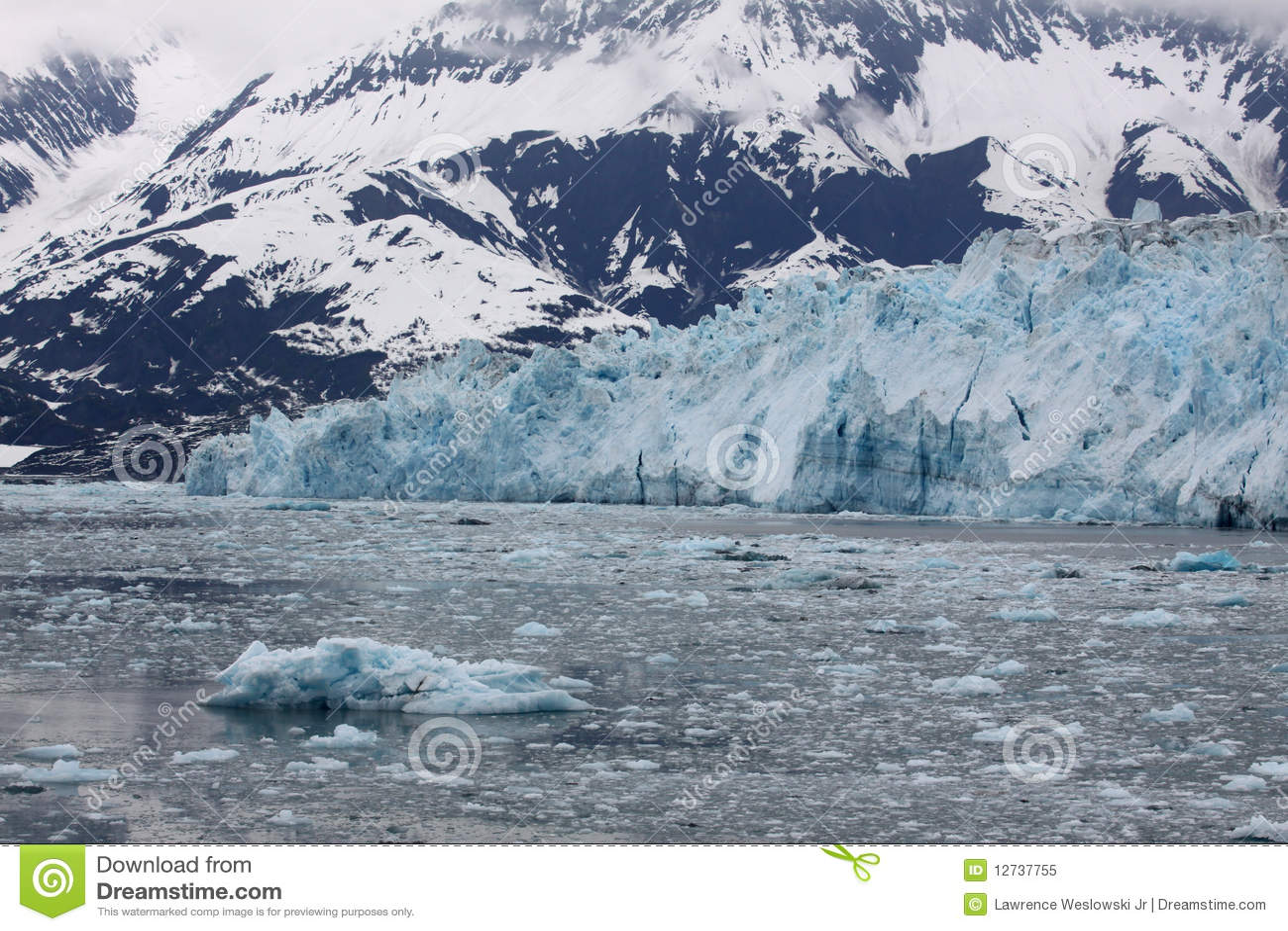 παγετώνας κόλπων της Αλάσ&ka