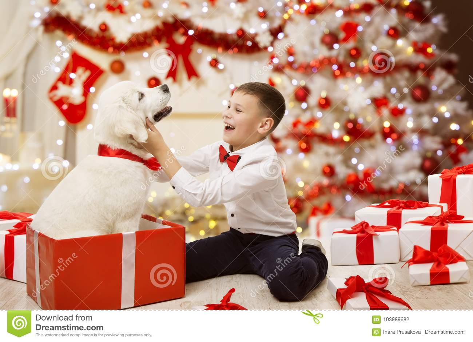 Παιδί που παίρνει το παρόν, ευτυχές αγόρι παιδιών σκυλιών Χριστουγέννων, χριστουγεννιάτικο δέντρο