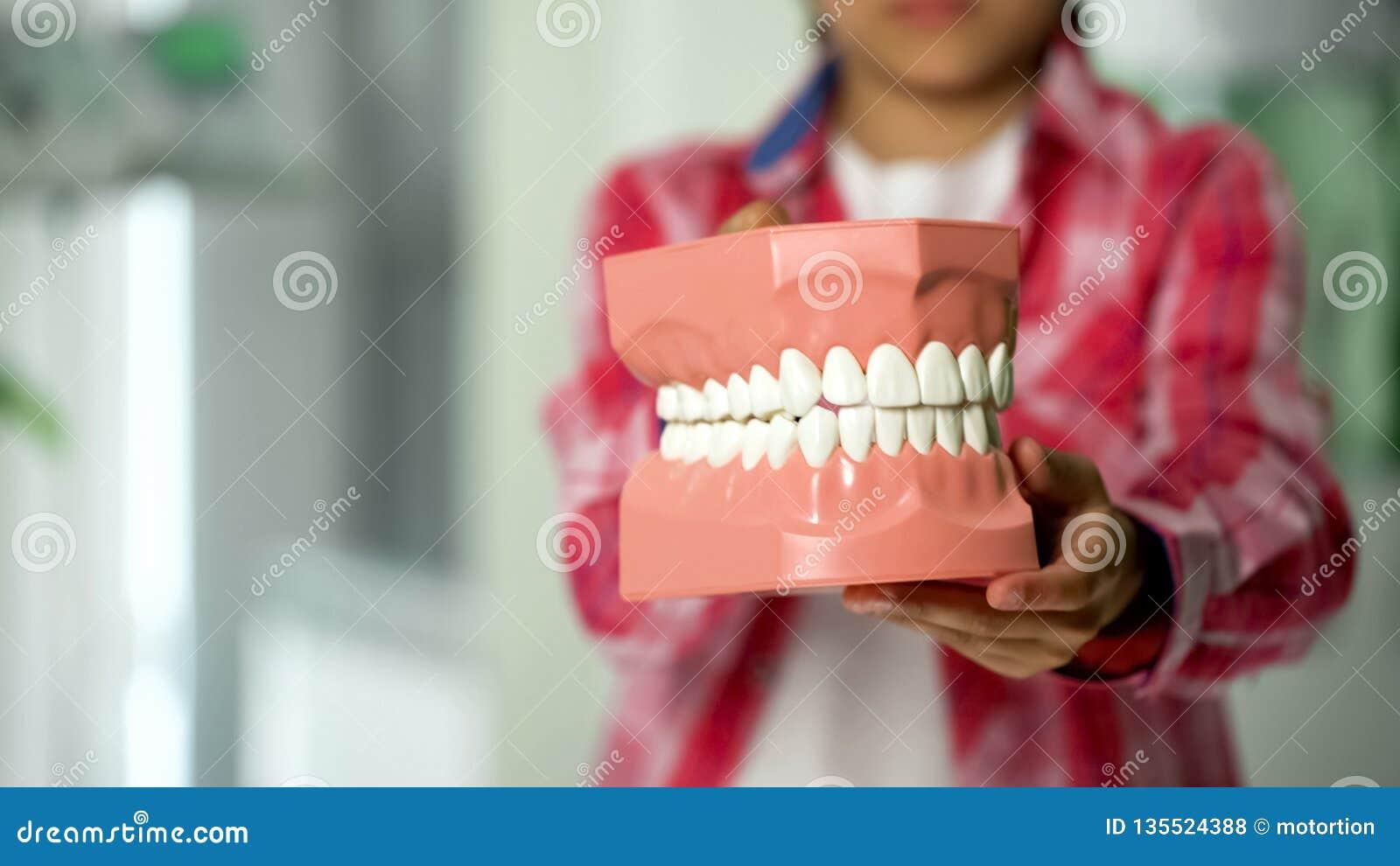 Παιδί που παρουσιάζει σαγόνι πρότυπες, οδοντικές υπηρεσίες για τα παιδιά, πρόληψη της τερηδόνας