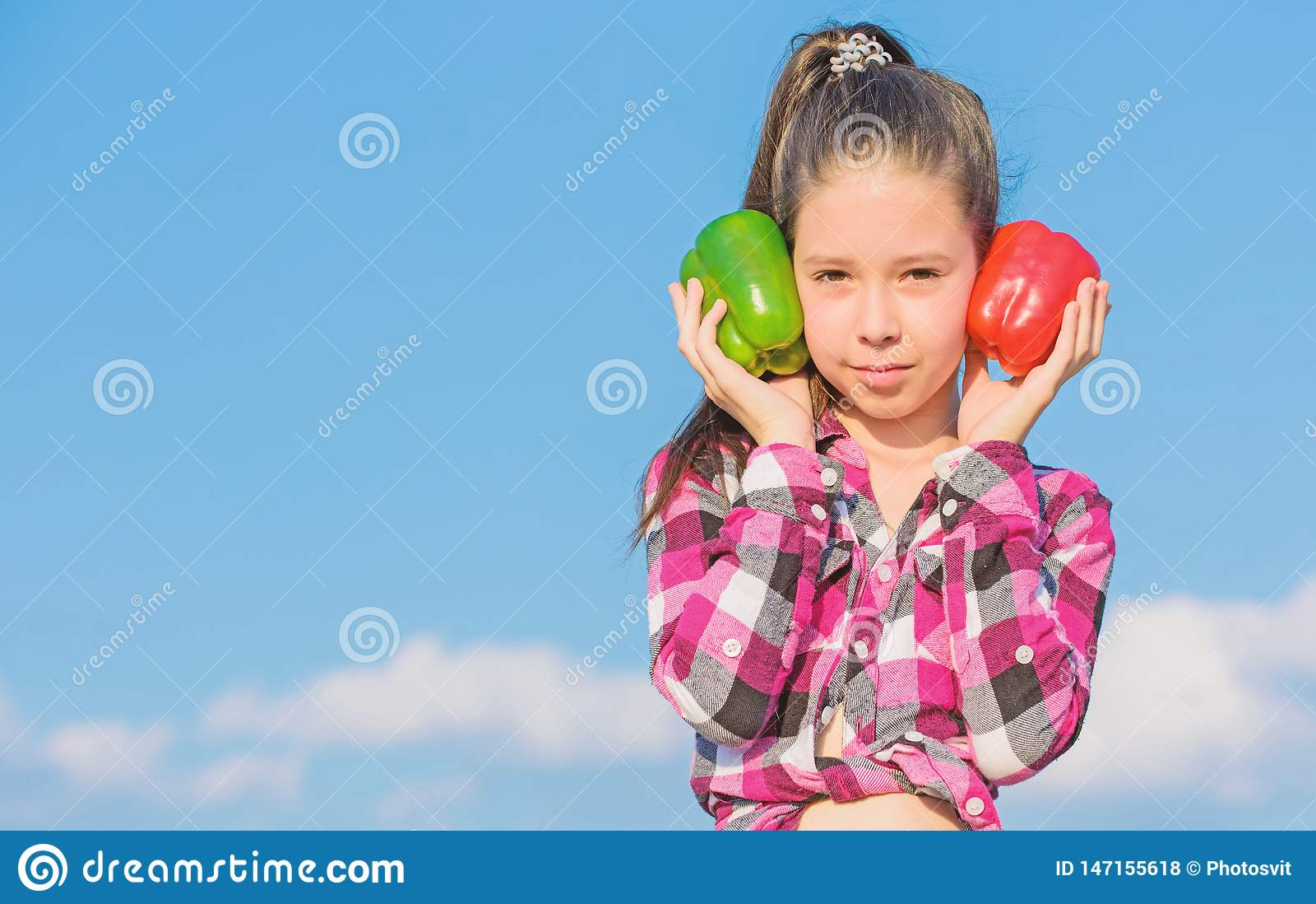 Παιδί που παρουσιάζει τα είδη πιπεριού Homegrown λαχανικά συγκομιδών πτώσης Ποιο πιπέρι εσείς θα επέλεγε Χορτοφάγος έννοια