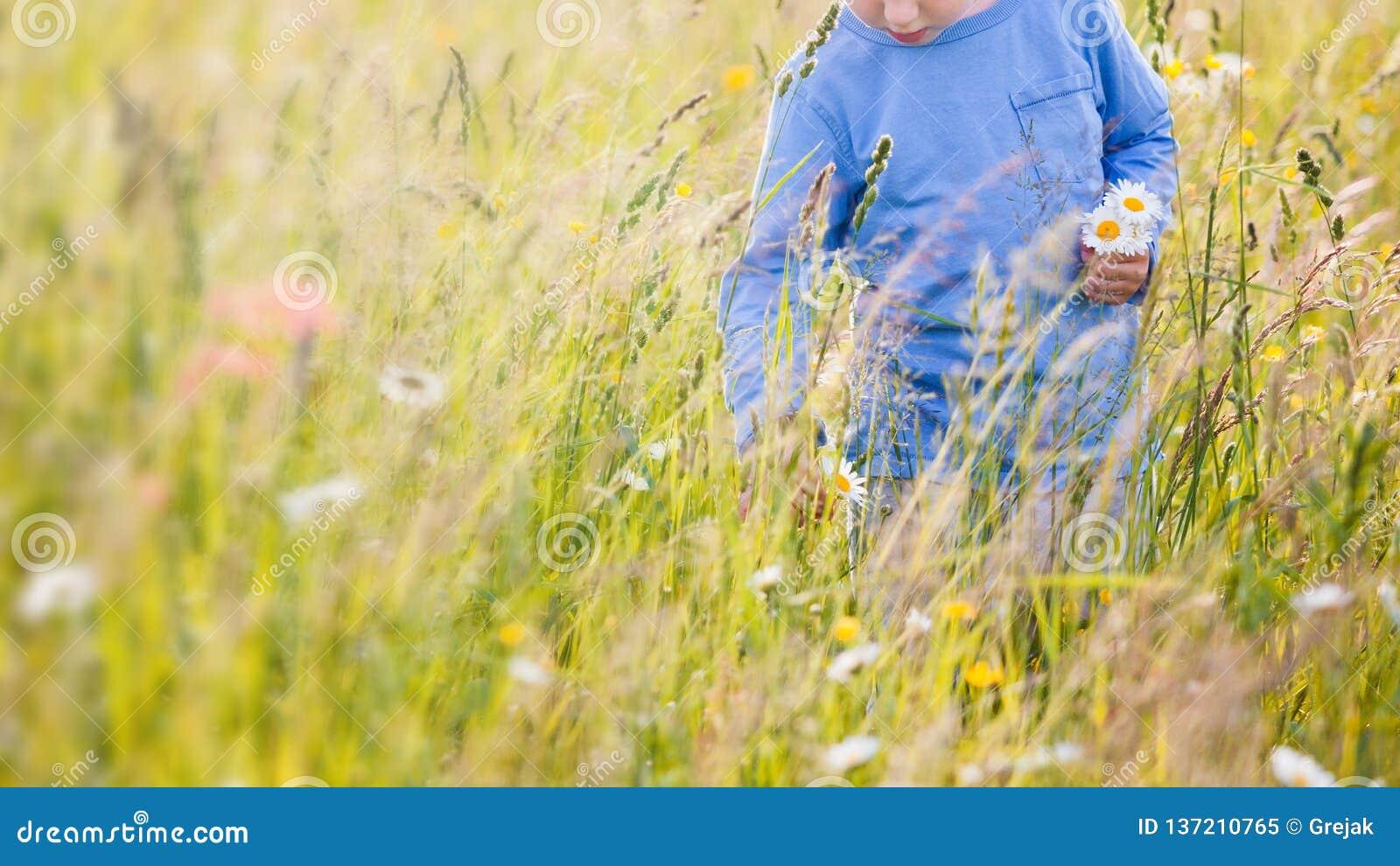 Παιδιά που επιλέγουν τα λουλούδια σε ένα λιβάδι