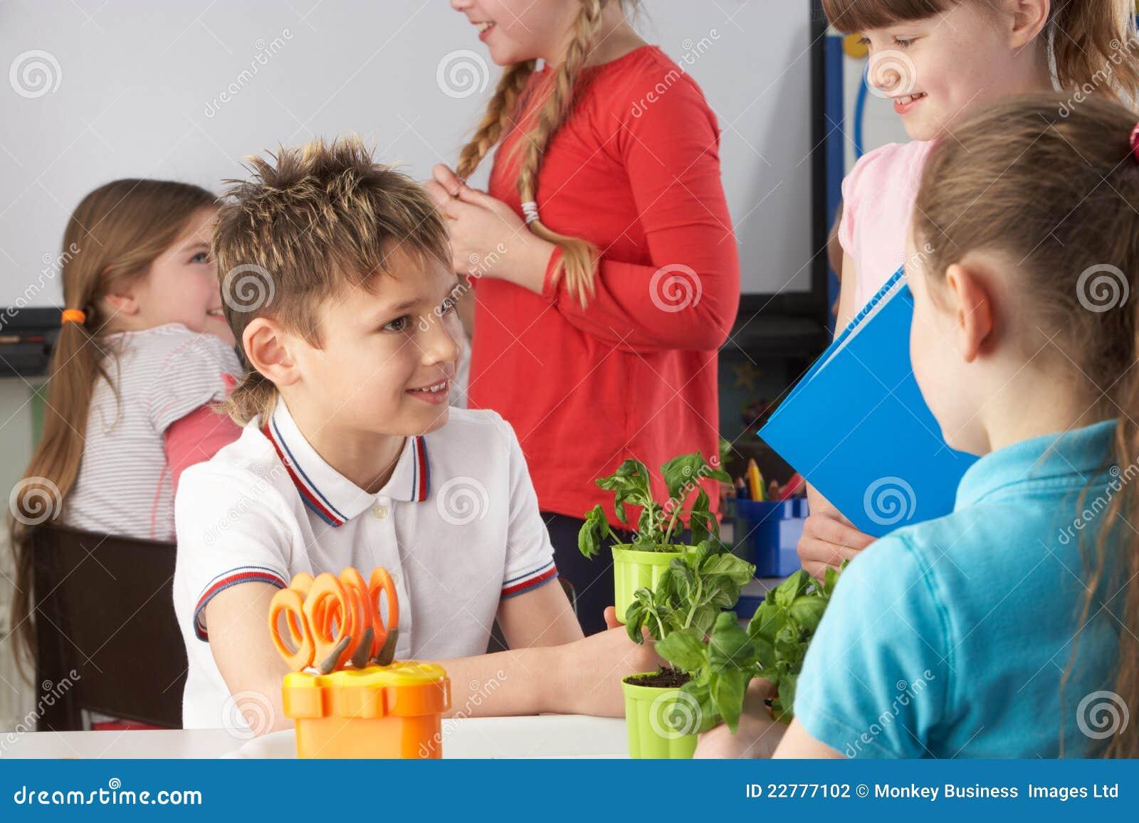 Παιδιά που μαθαίνουν για τα φυτά στη σχολική τάξη