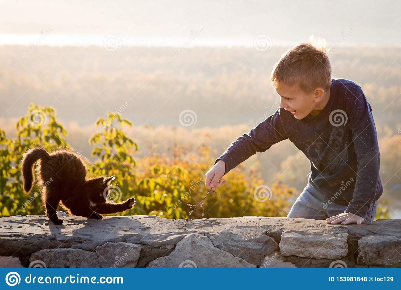 Παιδικά παιχνίδια με ένα γατάκι Φωτογραφία διασκέδασης Επικοινωνία με τα ζώα Χαρούμενο αγόρι Φωτεινή ημέρα φθινοπώρου Όμορφο τοπί