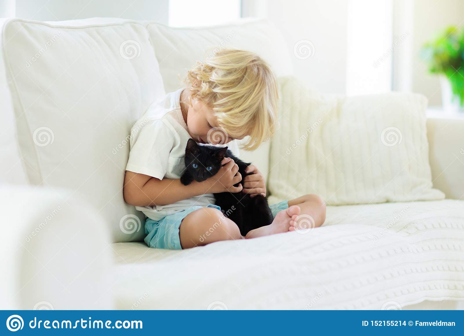 Παιχνίδι παιδιών με τη γάτα μωρών Παιδί και γατάκι
