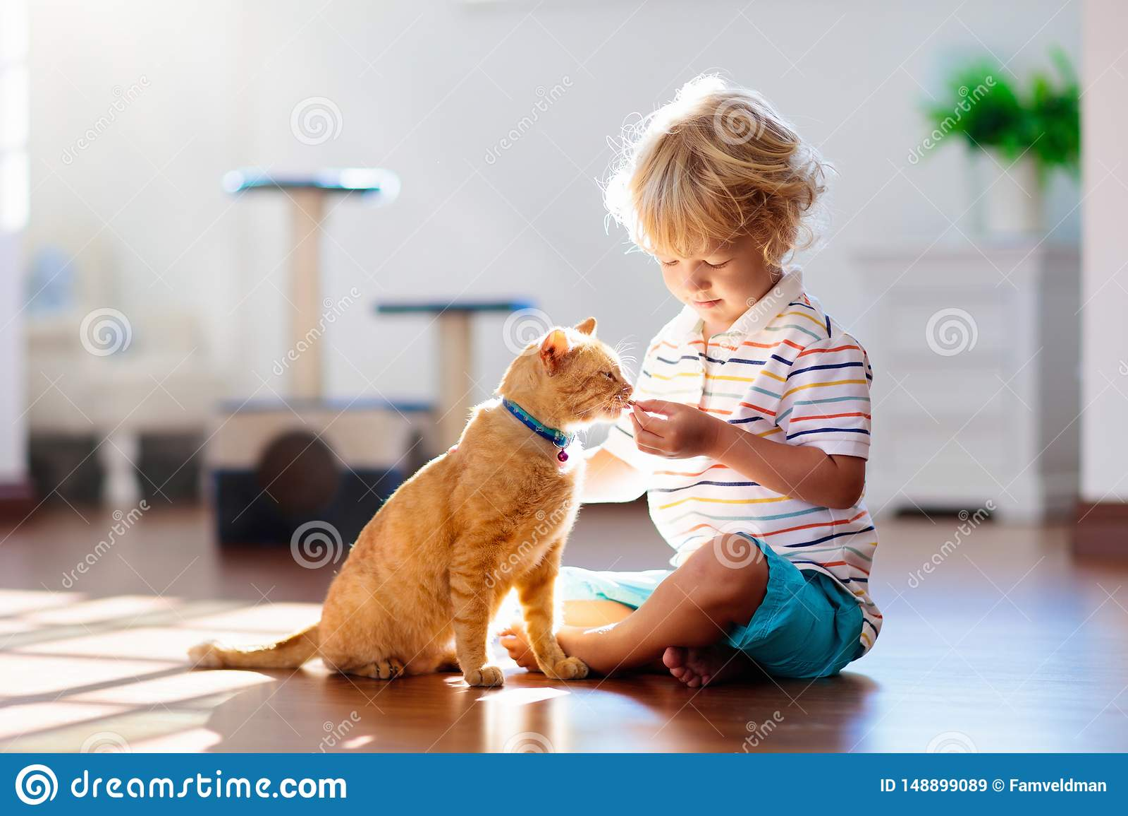 Παιχνίδι παιδιών με τη γάτα στο σπίτι Παιδιά και κατοικίδια ζώα