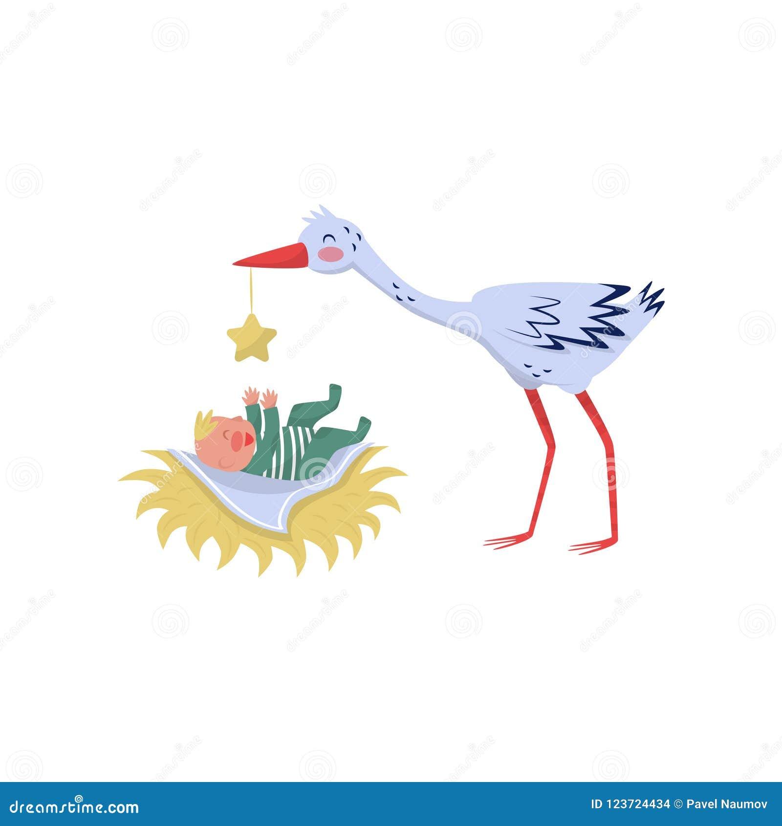 Μωρό πουλί pic