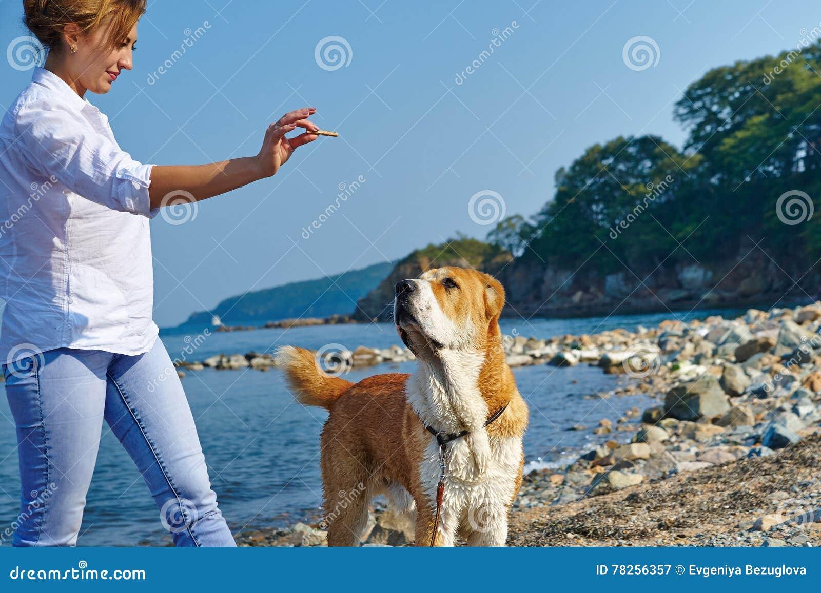 Παιχνίδι γυναικών με το σκυλί
