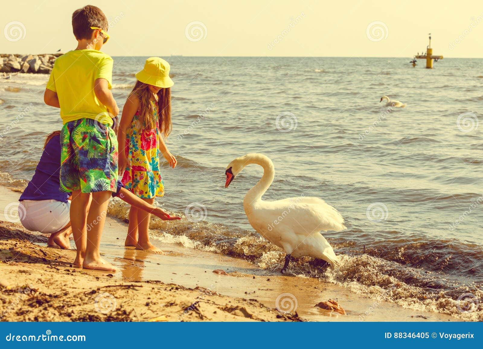 Παίζοντας με ένα μεγάλο πουλί