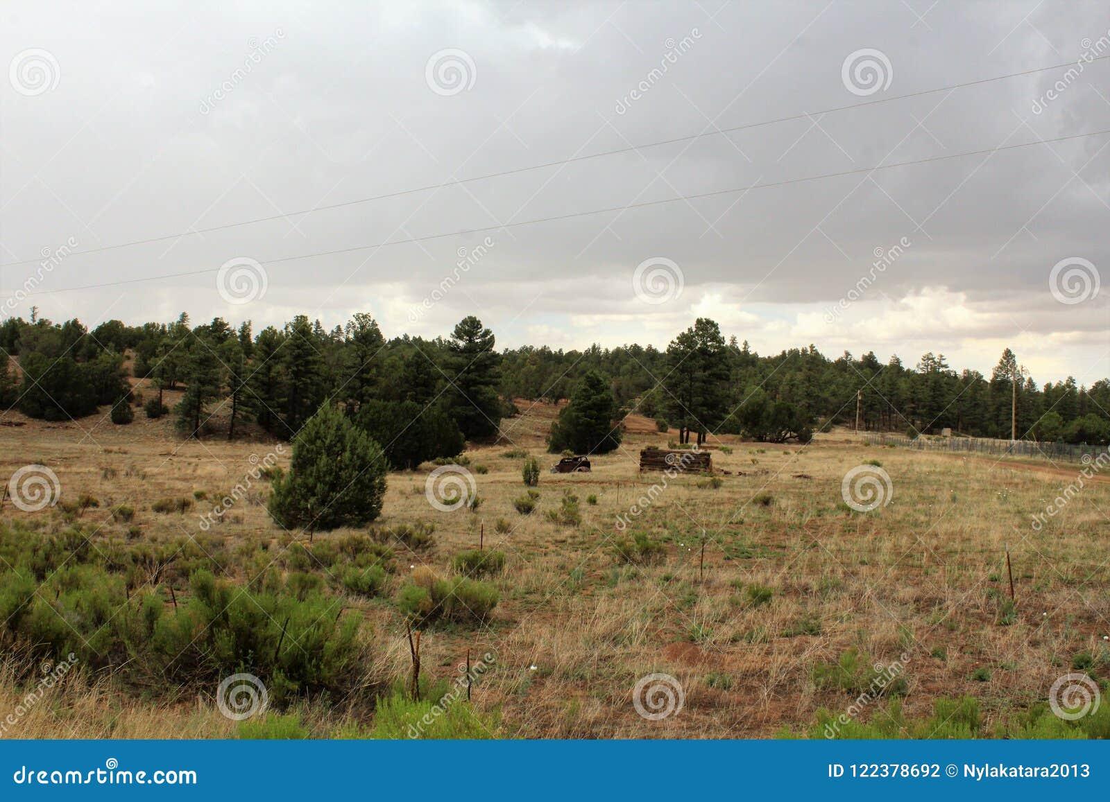 Παλαιό αυτοκίνητο και μερική καμπίνα κούτσουρων σε Linden, κομητεία Ναβάχο, Αριζόνα, Ηνωμένες Πολιτείες