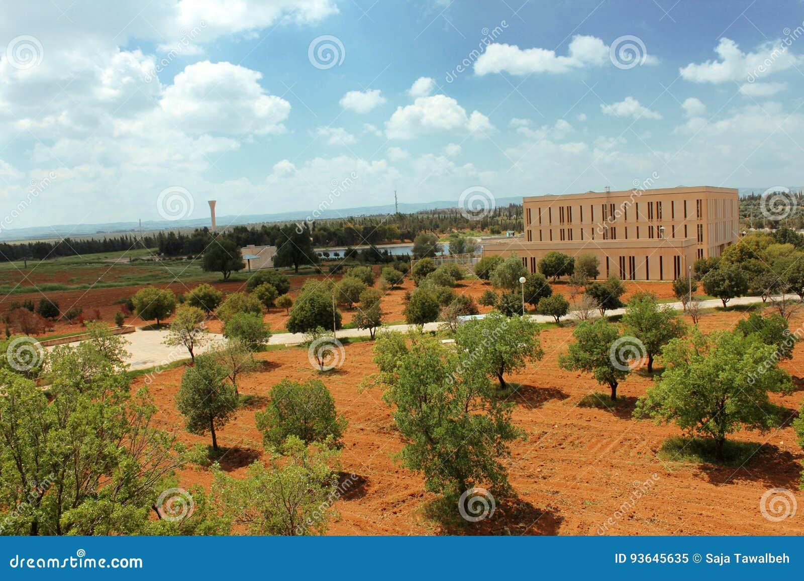 Πανεπιστήμιο της Ιορδανίας της επιστήμης και της τεχνολογίας