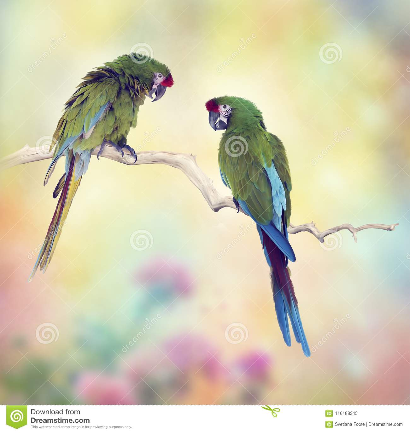 Παπαγάλοι Macaw Greenl που σκαρφαλώνουν σε έναν κλάδο