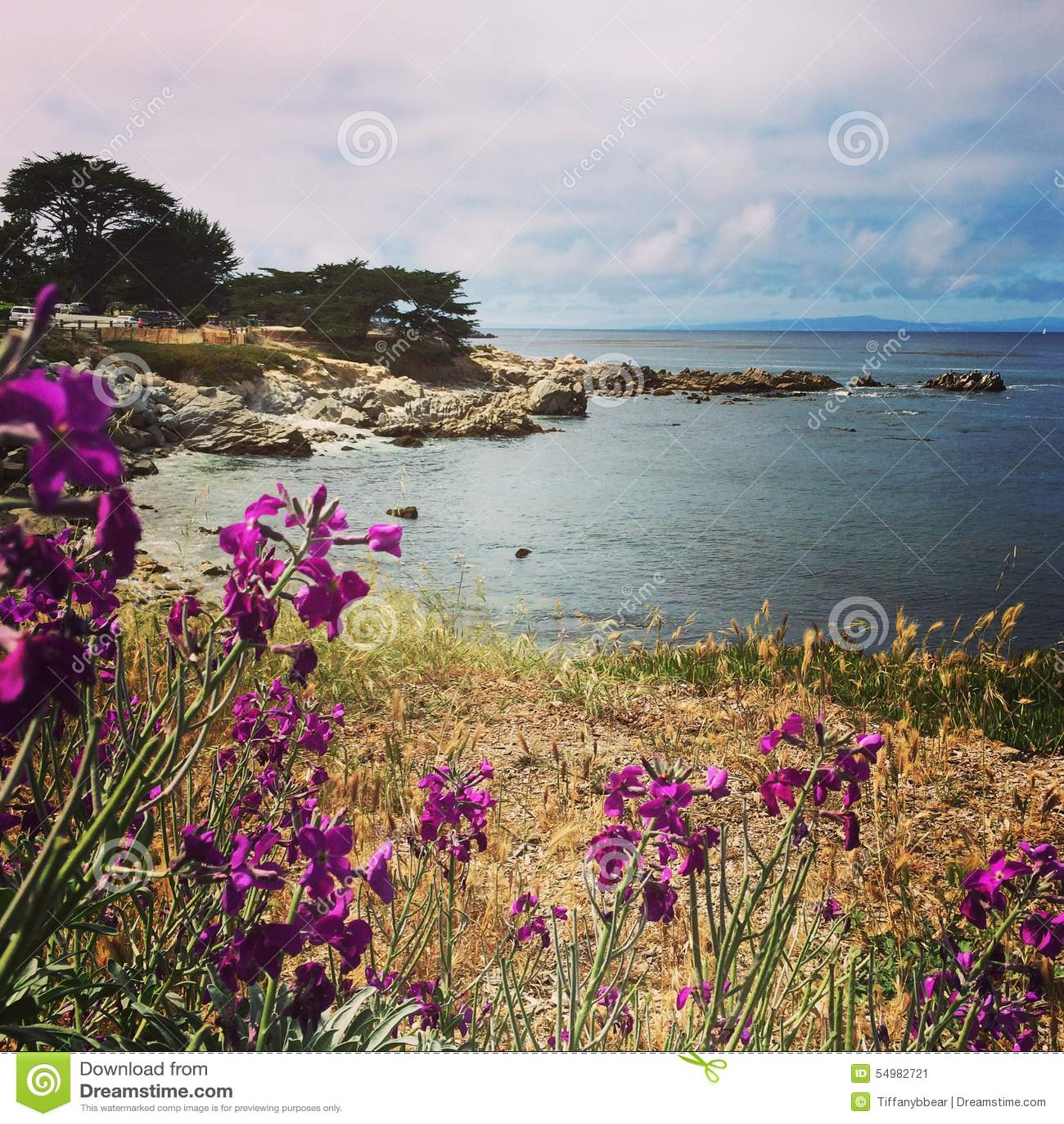 Παράκτιο τοπίο κόλπων Monterey