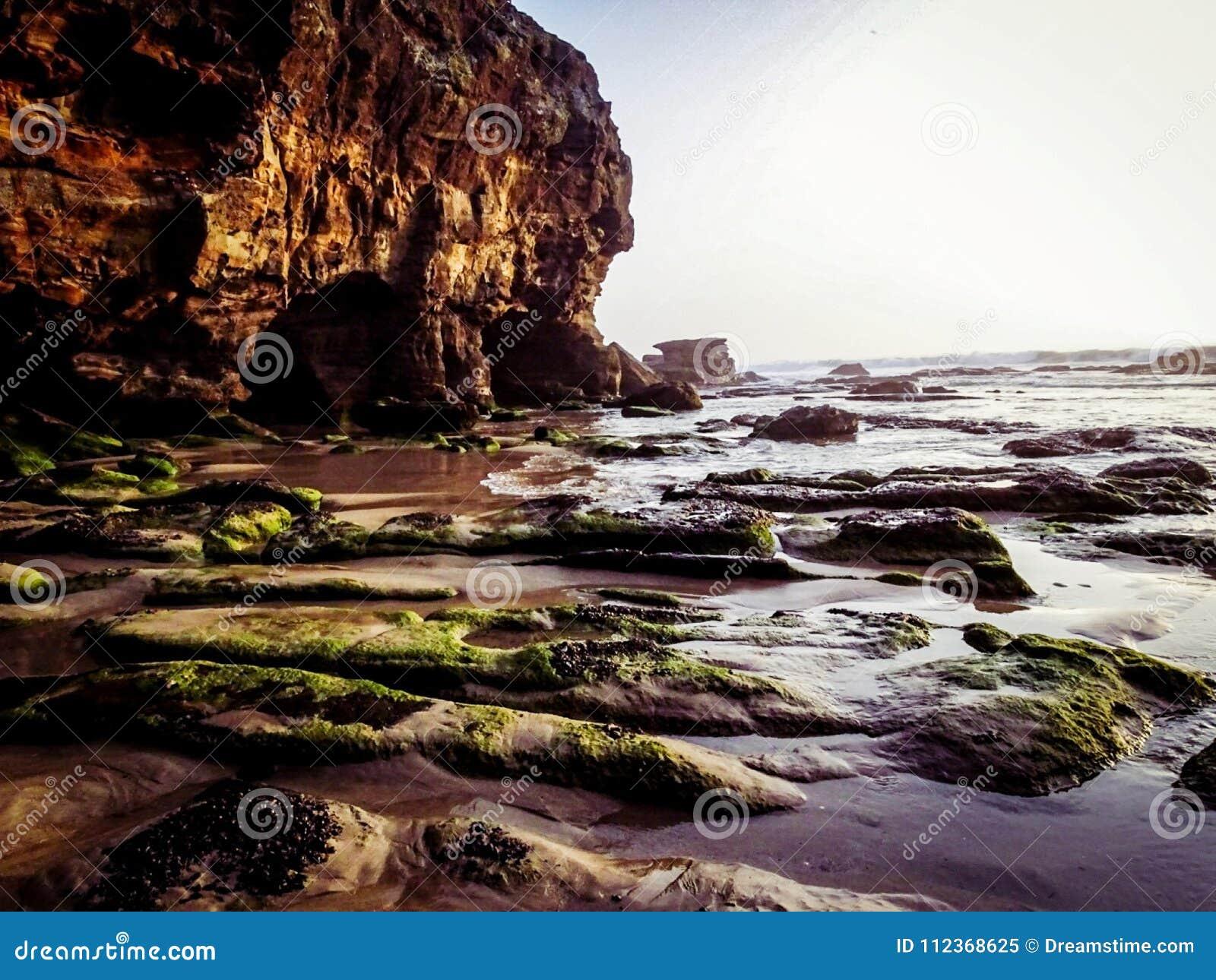 Παραλία Νιουκάσλ, Αυστραλία σπηλιών