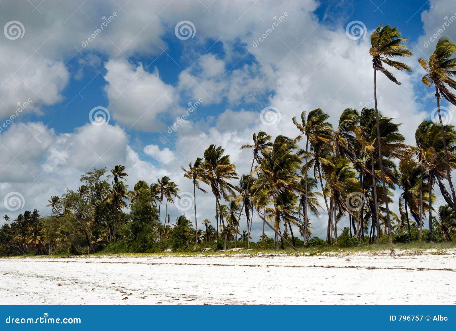 παραλία zanzibar