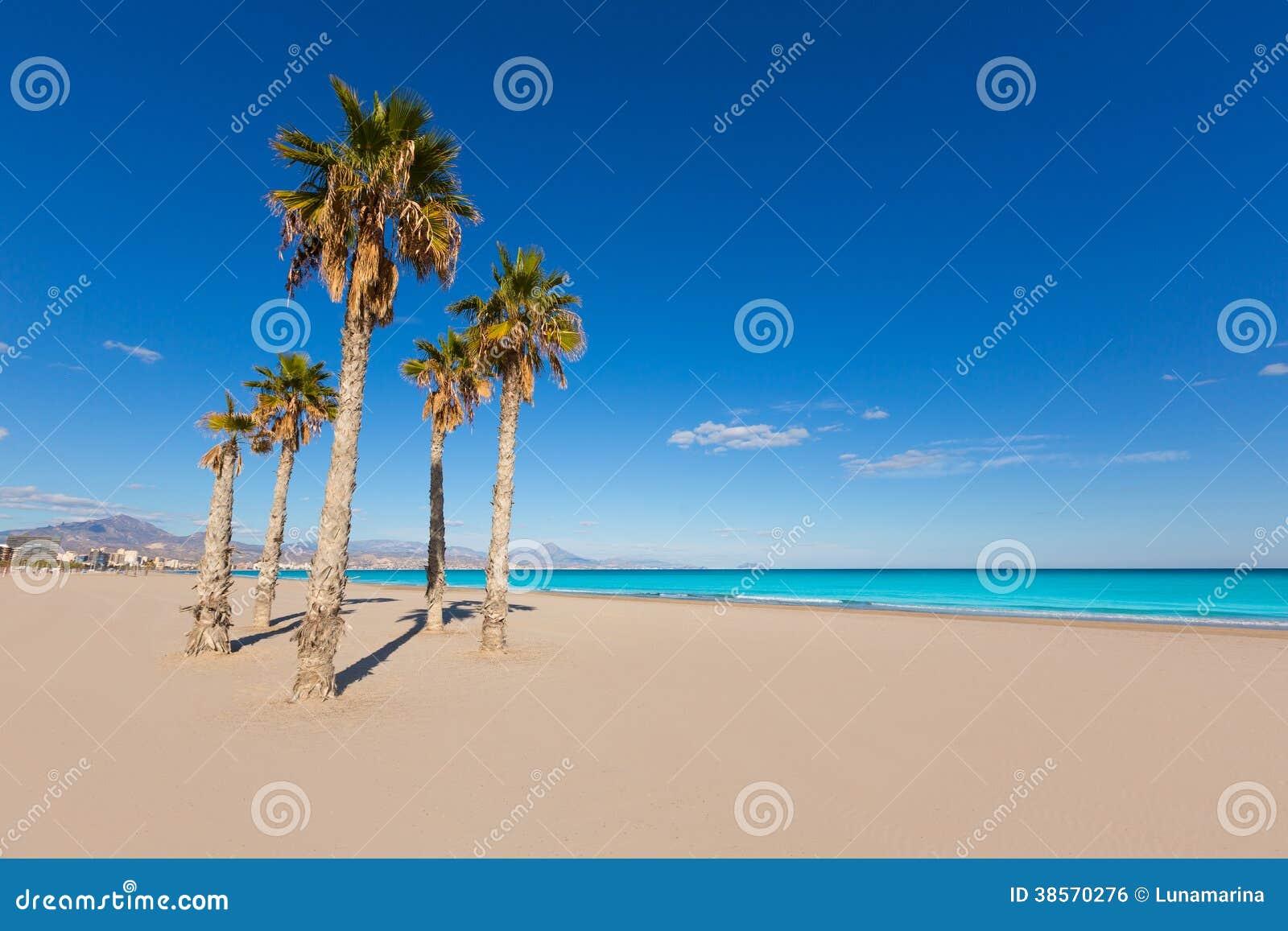 Παραλία της Αλικάντε San Juan με τα δέντρα φοινικών