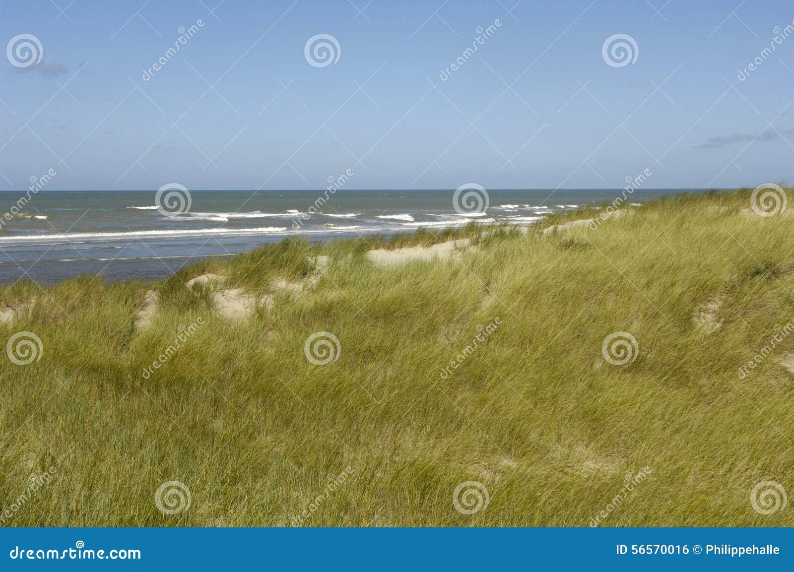 Download Παραλία της κηλίδας ηλίου LE Touquet Παρίσι στο Nord-Pas-de-Calais Στοκ Εικόνες - εικόνα από αμμόλοφος, παραλία: 56570016