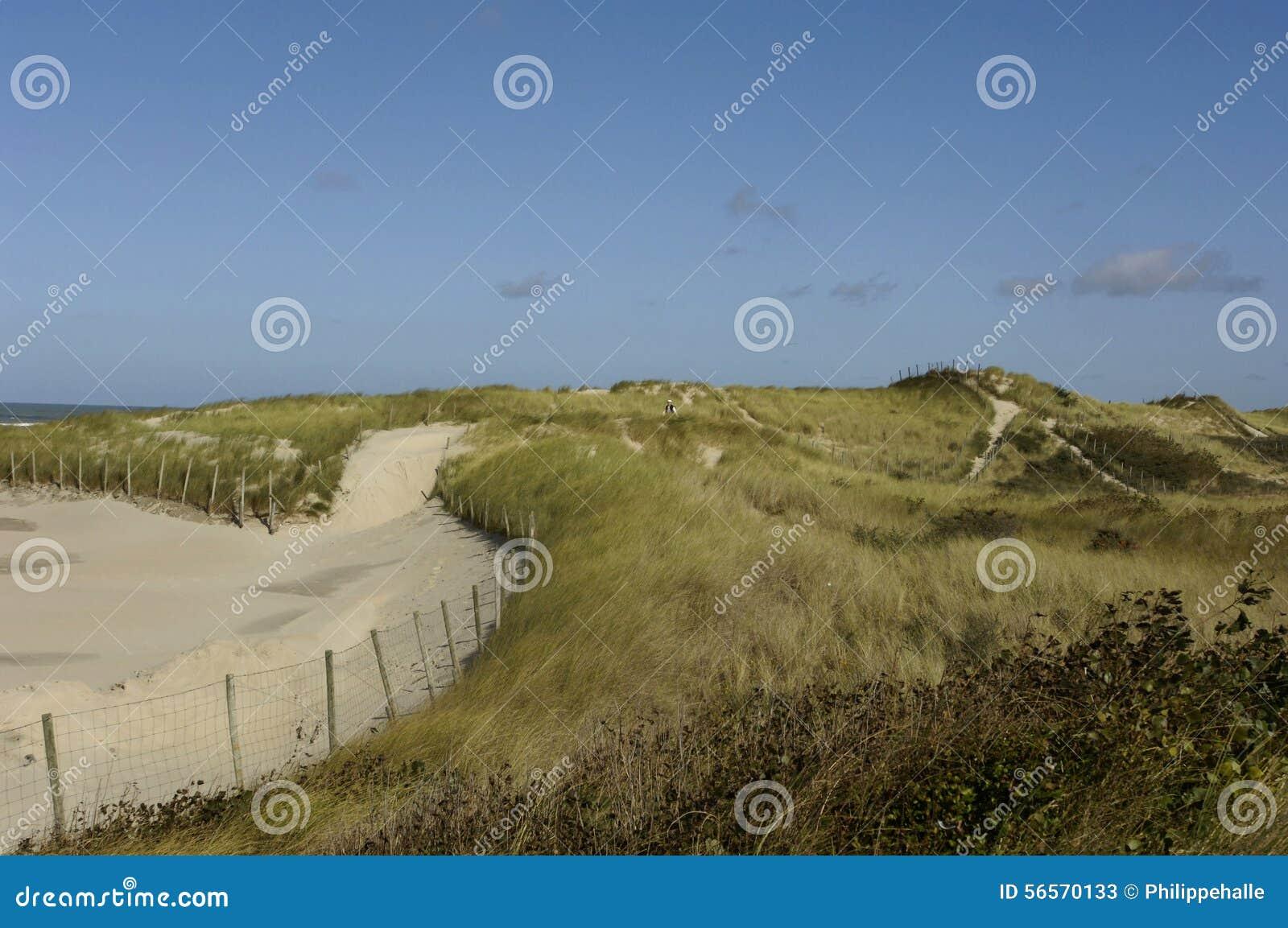 Download Παραλία της κηλίδας ηλίου LE Touquet Παρίσι στο Nord-Pas-de-Calais Στοκ Εικόνα - εικόνα από έξω, παραλία: 56570133
