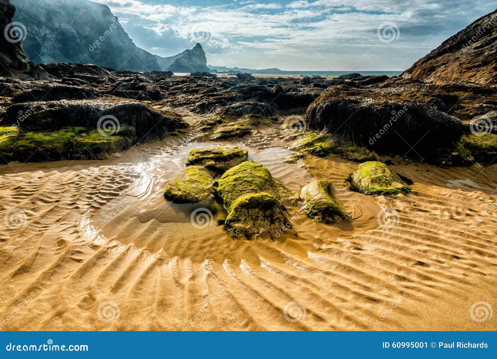 παραλία whipsiderry