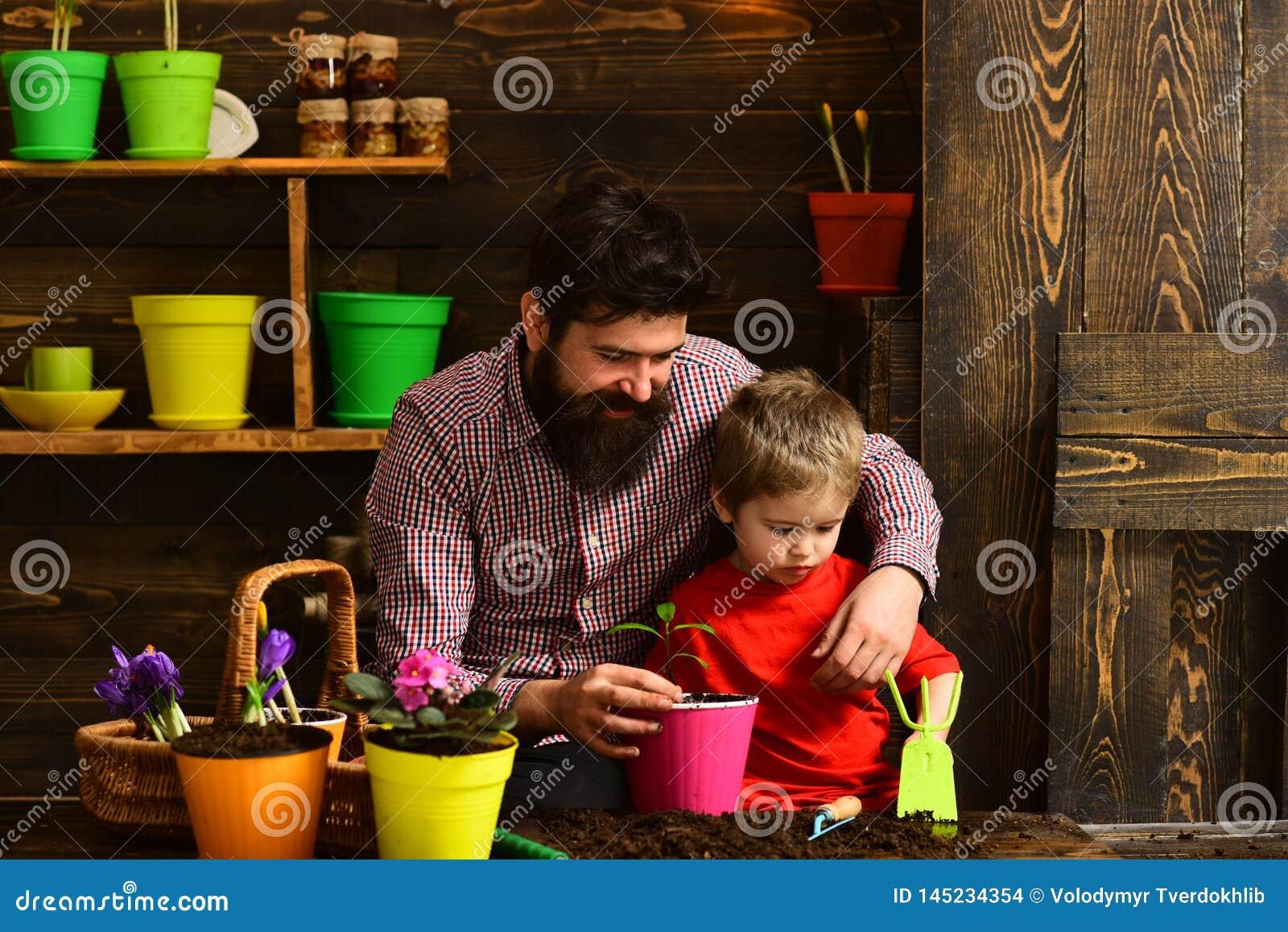 Πατέρας και γιος Οικογενειακή ημέρα Θερμοκήπιο ευτυχείς κηπουροί με τα λουλούδια άνοιξη Πότισμα προσοχής λουλουδιών Εδαφολογικά λ