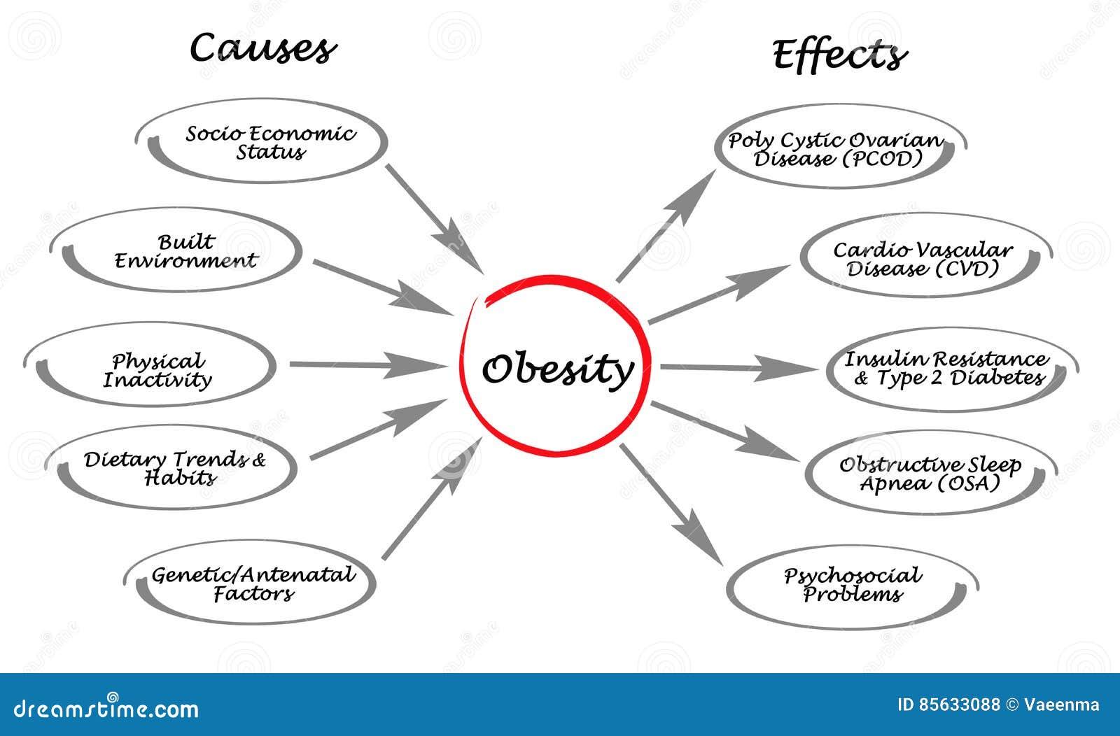 Παχυσαρκία: αίτια και αιτιατά