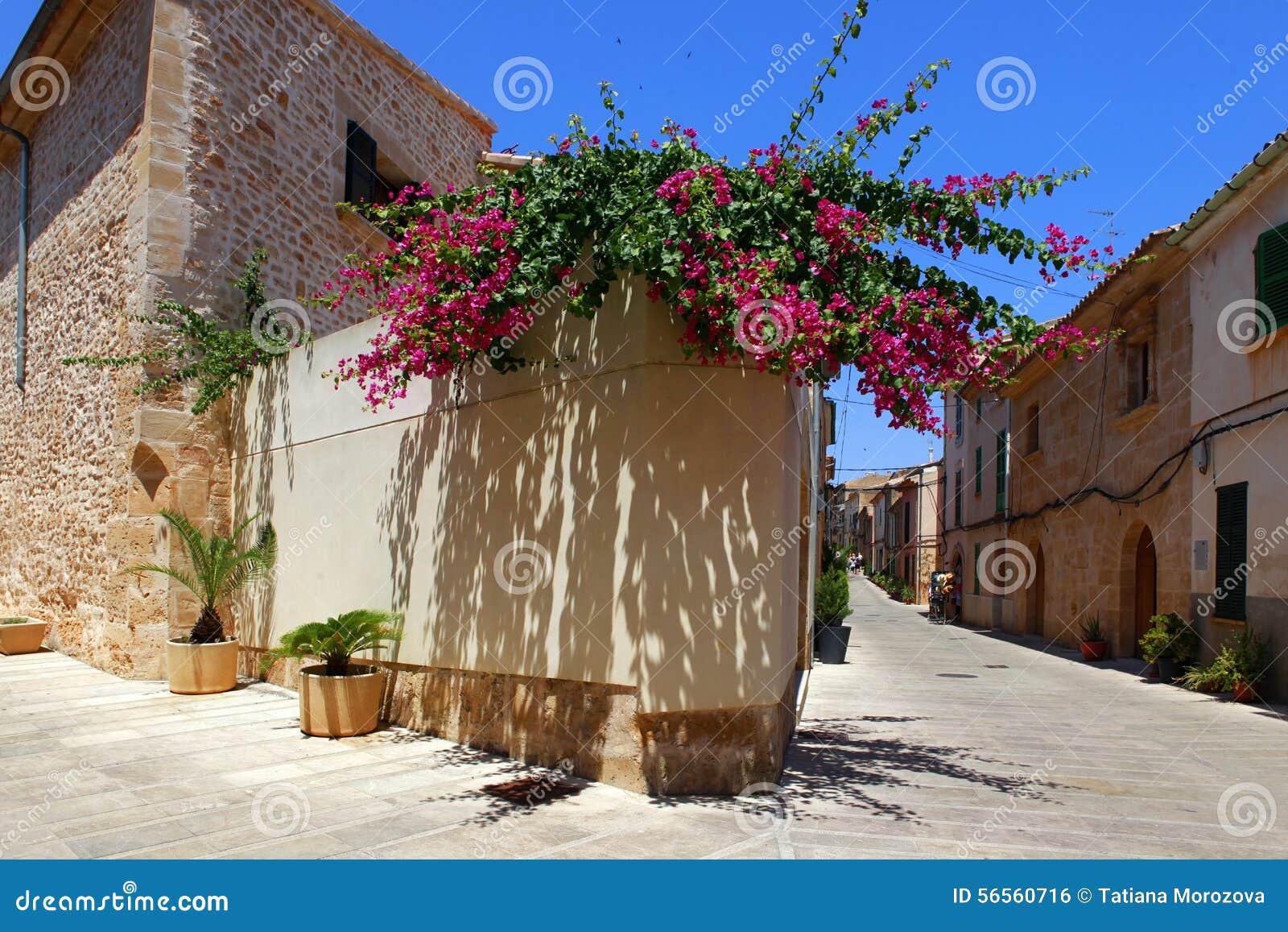 Download Παλαιά πόλη Alcudia στοκ εικόνες. εικόνα από οδός, παραδοσιακός - 56560716
