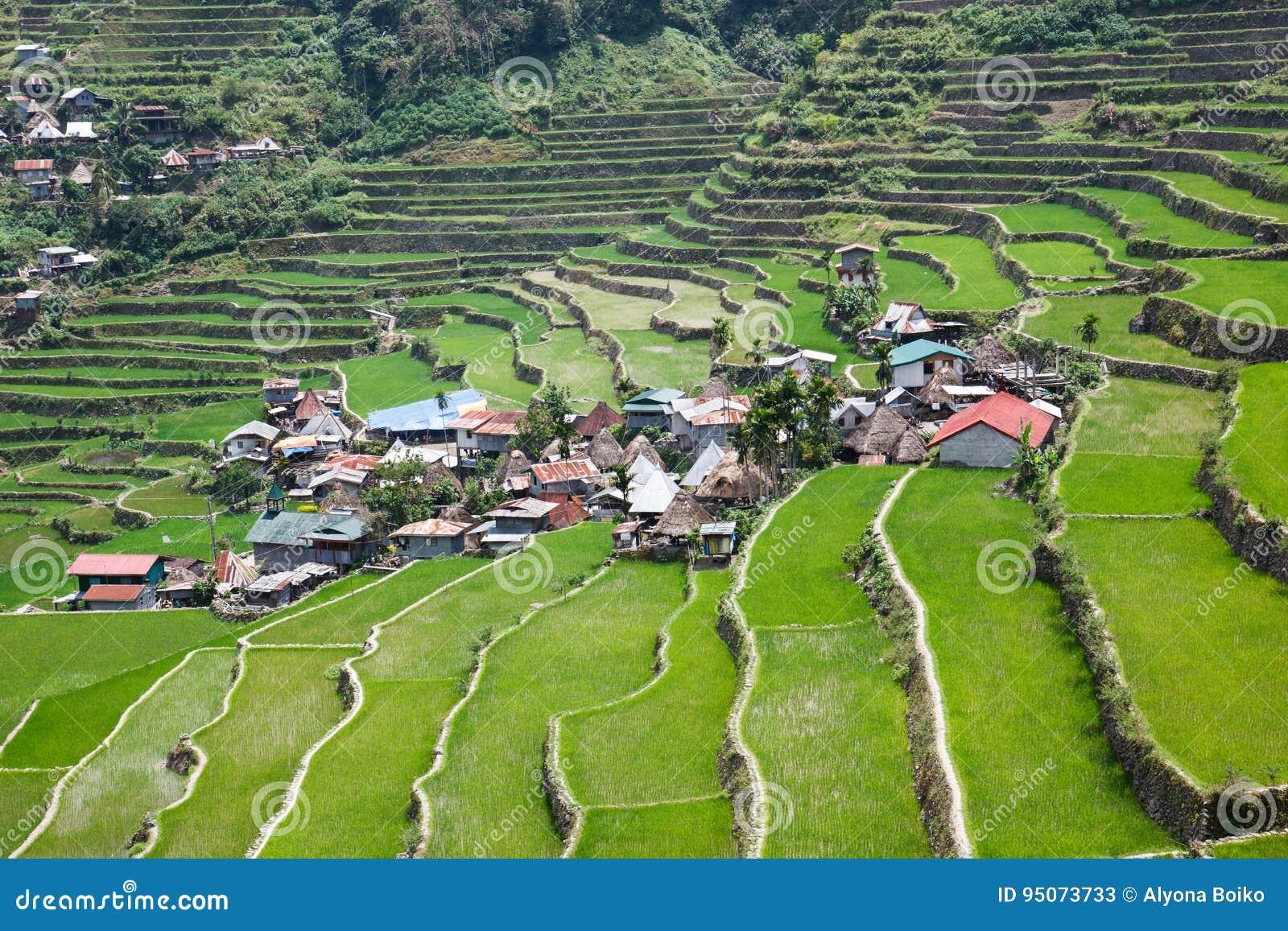 Πεζούλια τομέων ρυζιού Batad, επαρχία Ifugao, Banaue, Φιλιππίνες