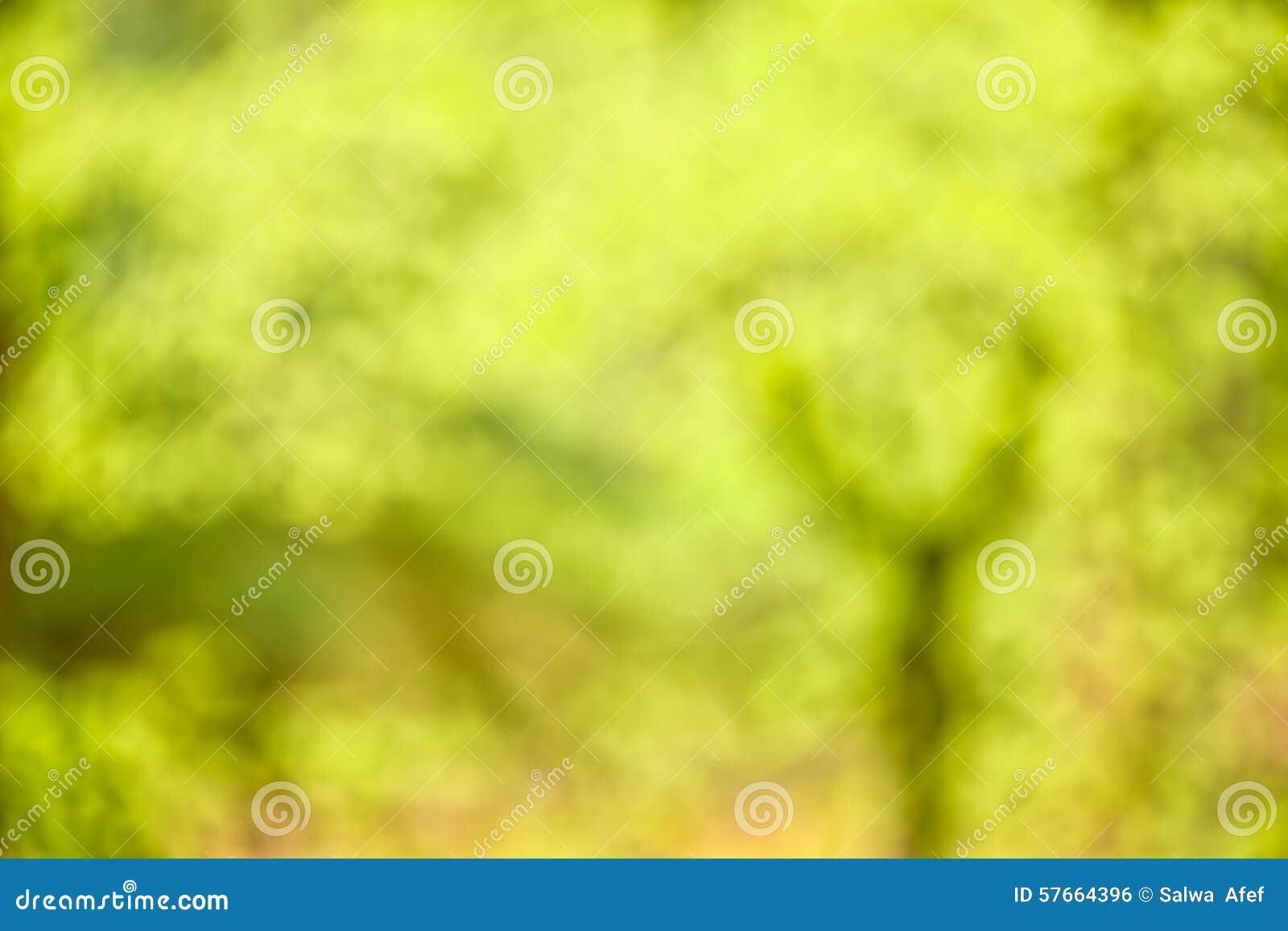 Περίληψη δέντρων
