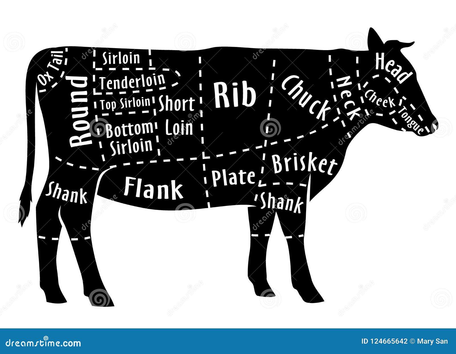Περικοπή του βόειου κρέατος, διάγραμμα για το χασάπη Περικοπή βόειου κρέατος