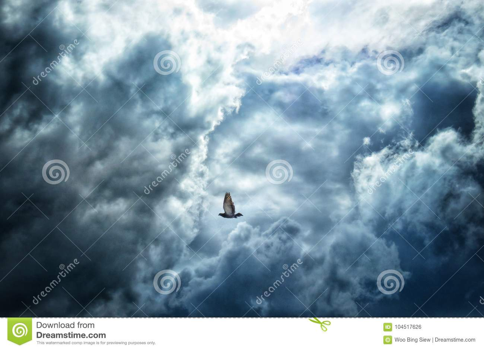 Περιστέρι που πετά στα σύννεφα