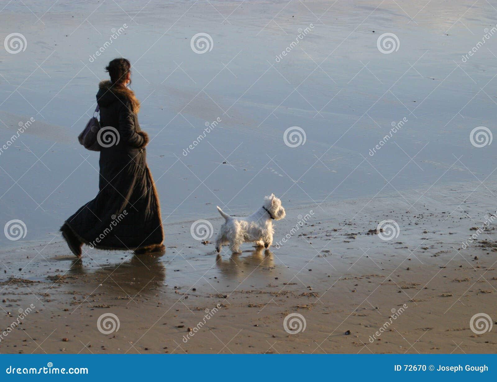 περπάτημα σκυλιών