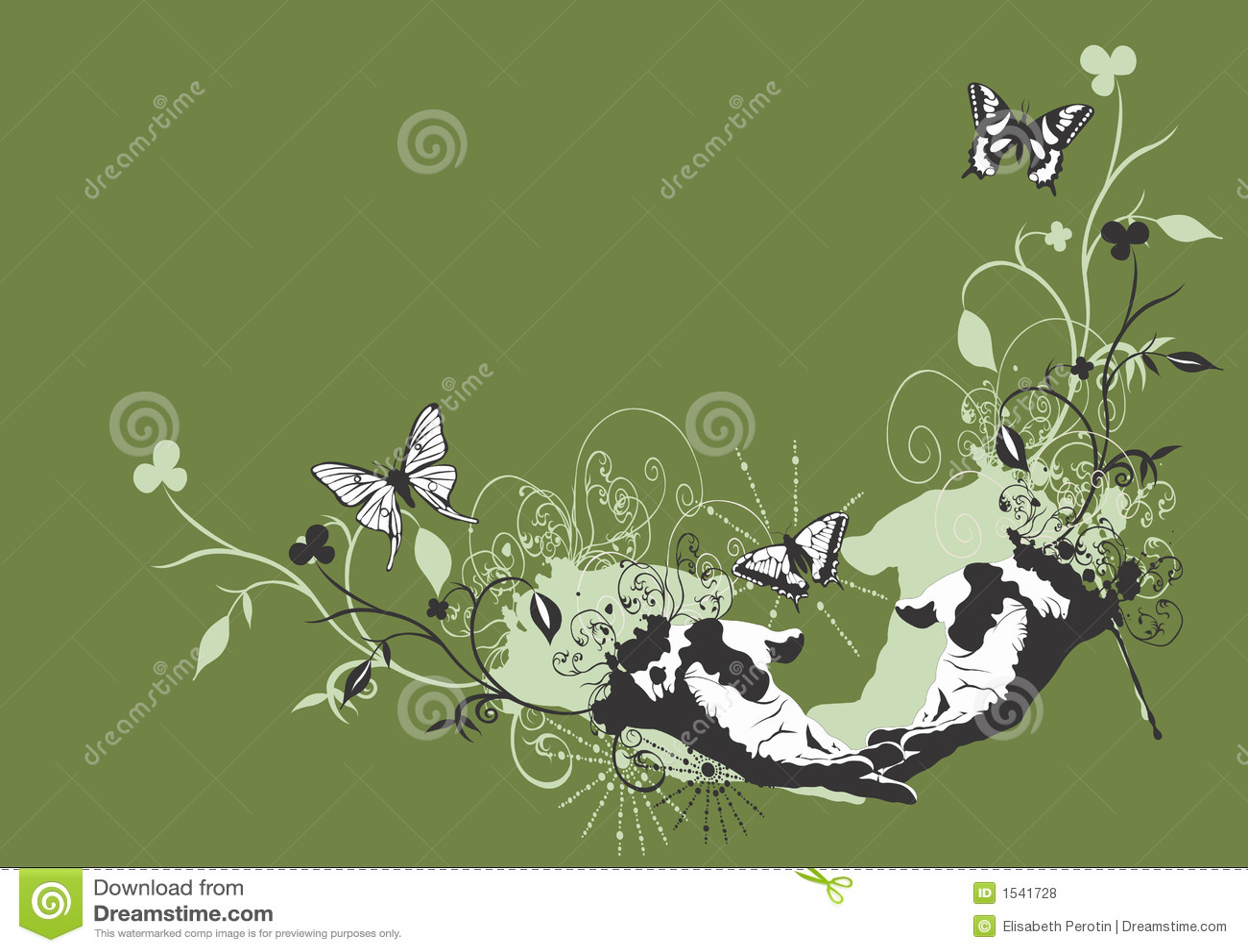 πεταλούδες βρώμικες