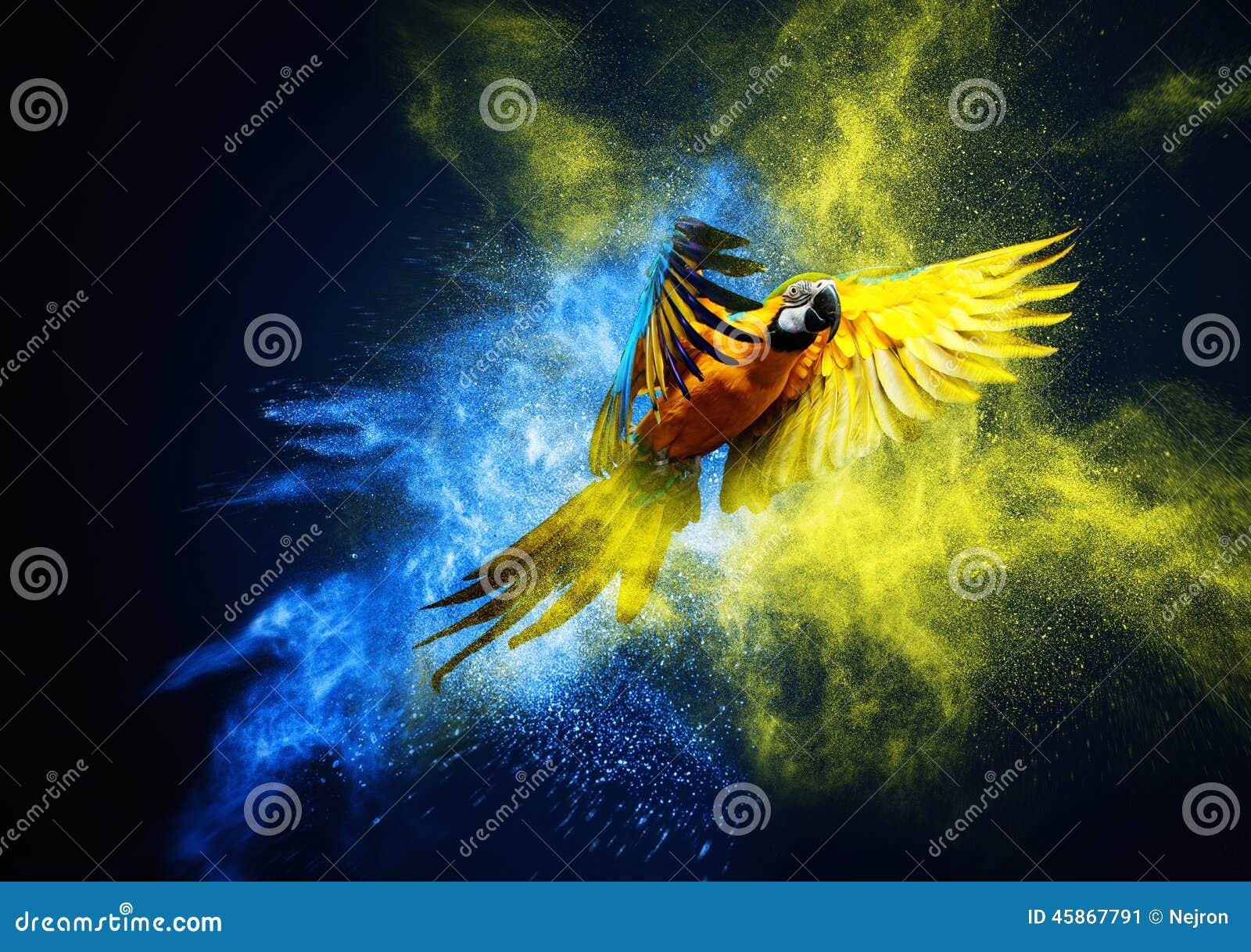 Πετώντας παπαγάλος Ara