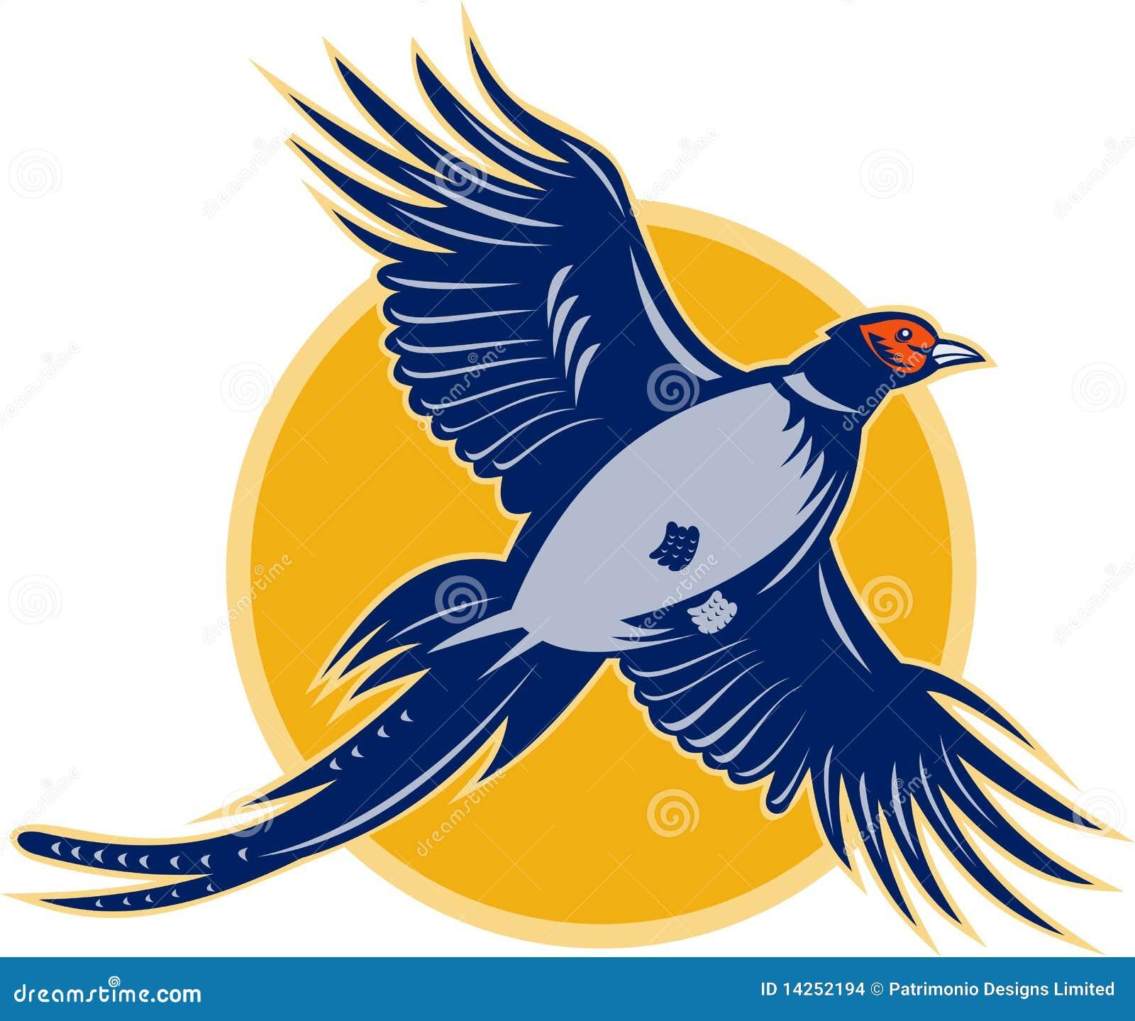 πετώντας φασιανός πουλιώ&nu