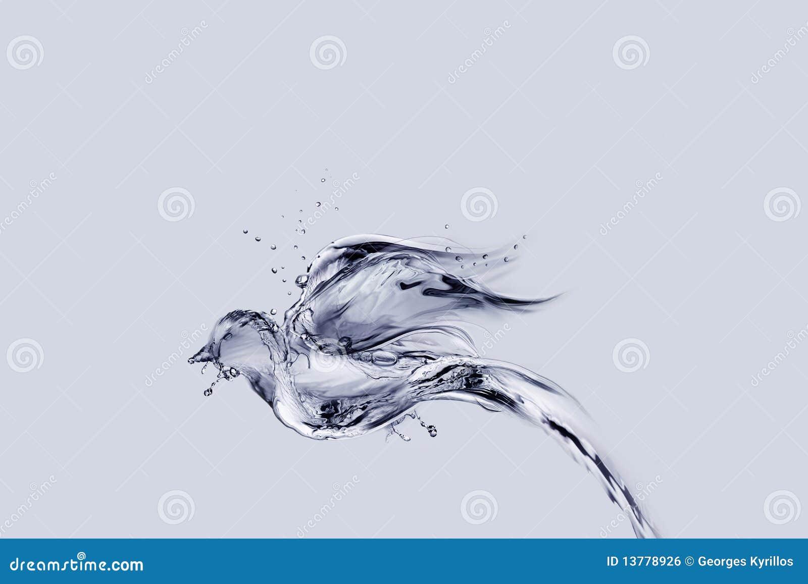 πετώντας ύδωρ πουλιών