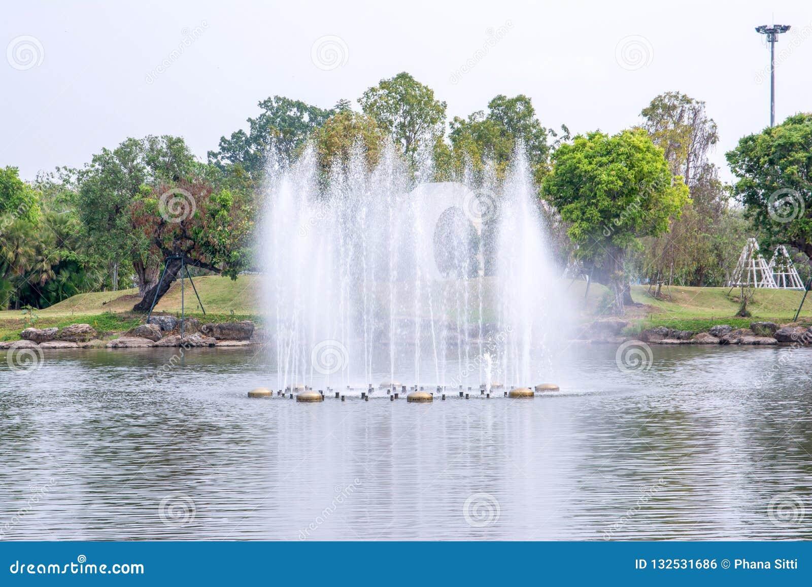 Πηγή λιμνών στο βασιλικό κήπο Chiangmai, Ταϊλάνδη χλωρίδας