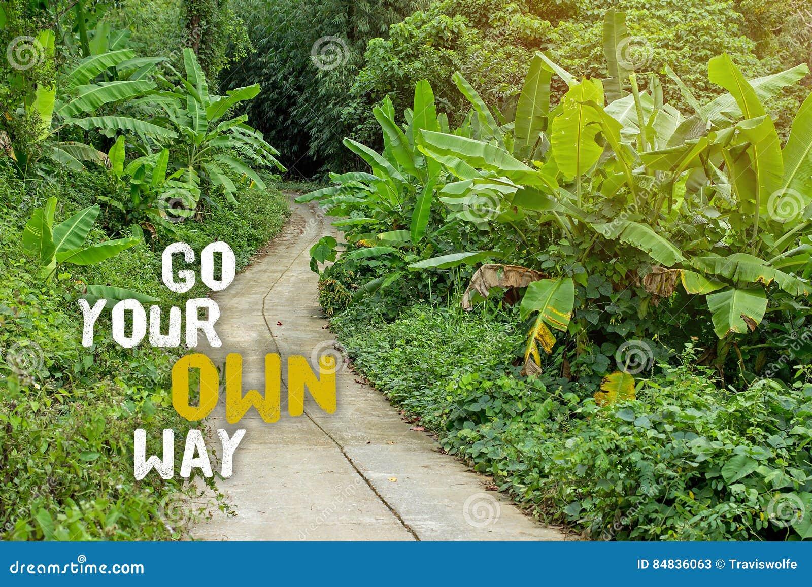 πηγαίνετε τρόπος σας Επιλέξτε την πορεία σας στη ζωή, και πάρτε το μακροχρόνιο σπίτι τρόπων, ο δρόμος λιγότερο που ταξιδεύουν Ερε